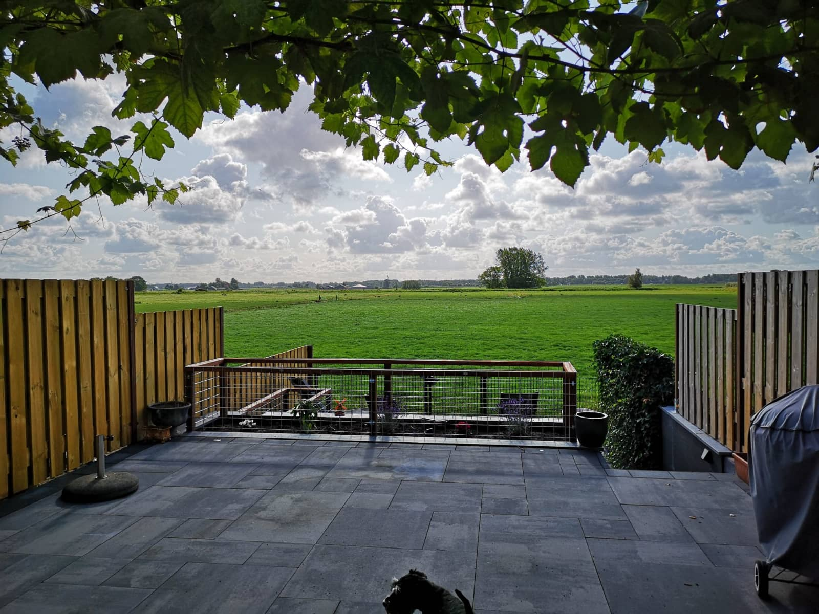 Housesitting assignment in Lisse, Netherlands