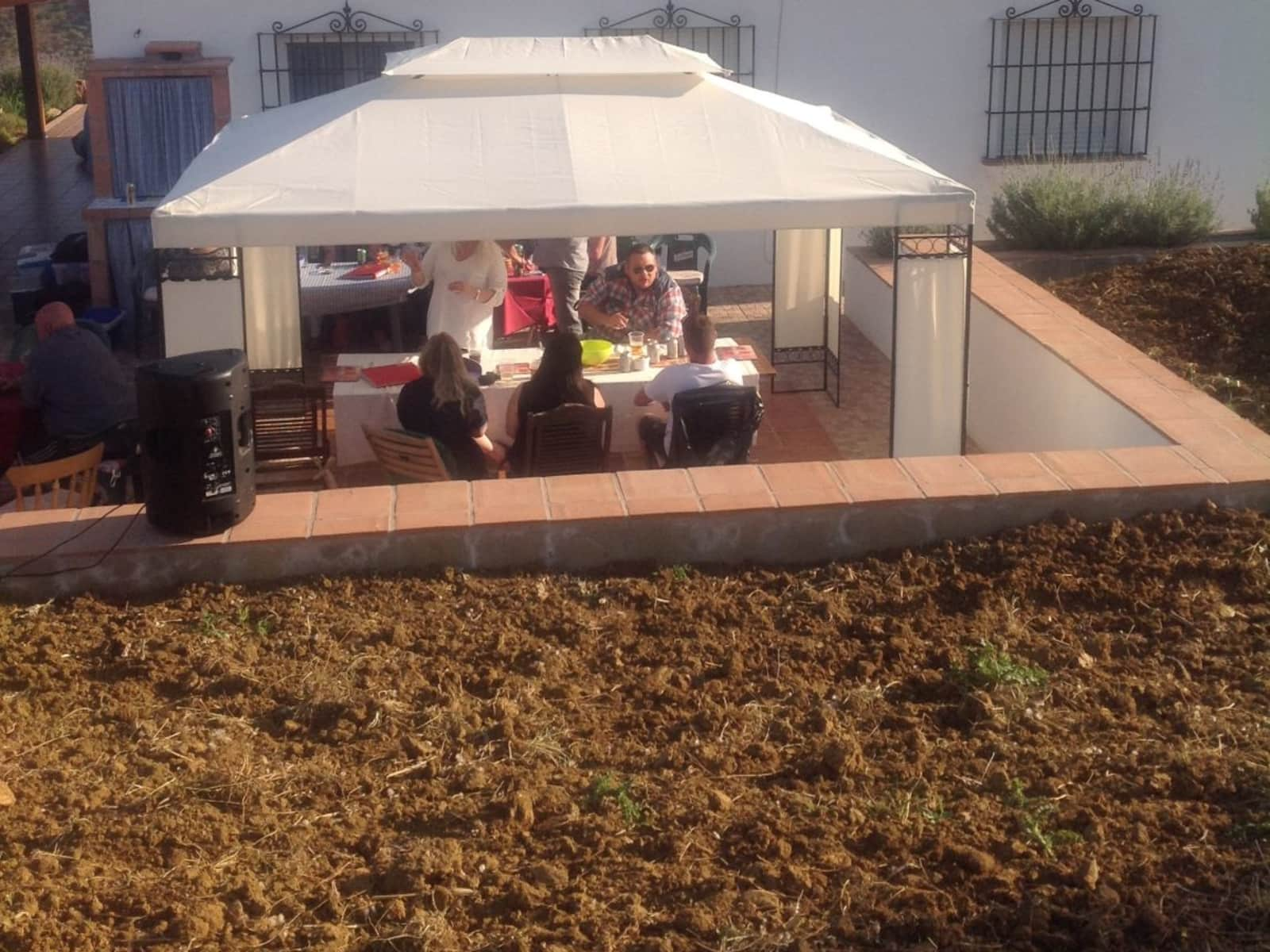 Housesitting assignment in Tolox, Spain