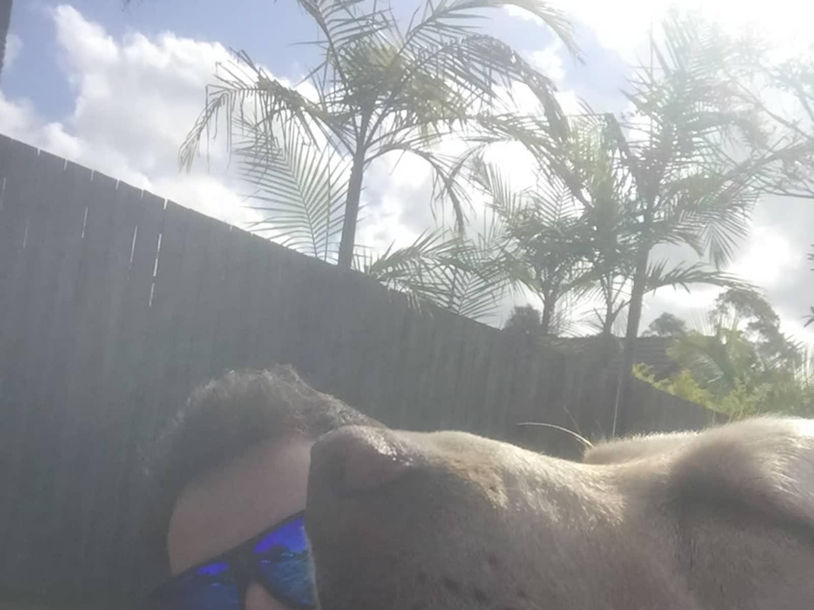 Logan from Sunshine Coast, Queensland, Australia