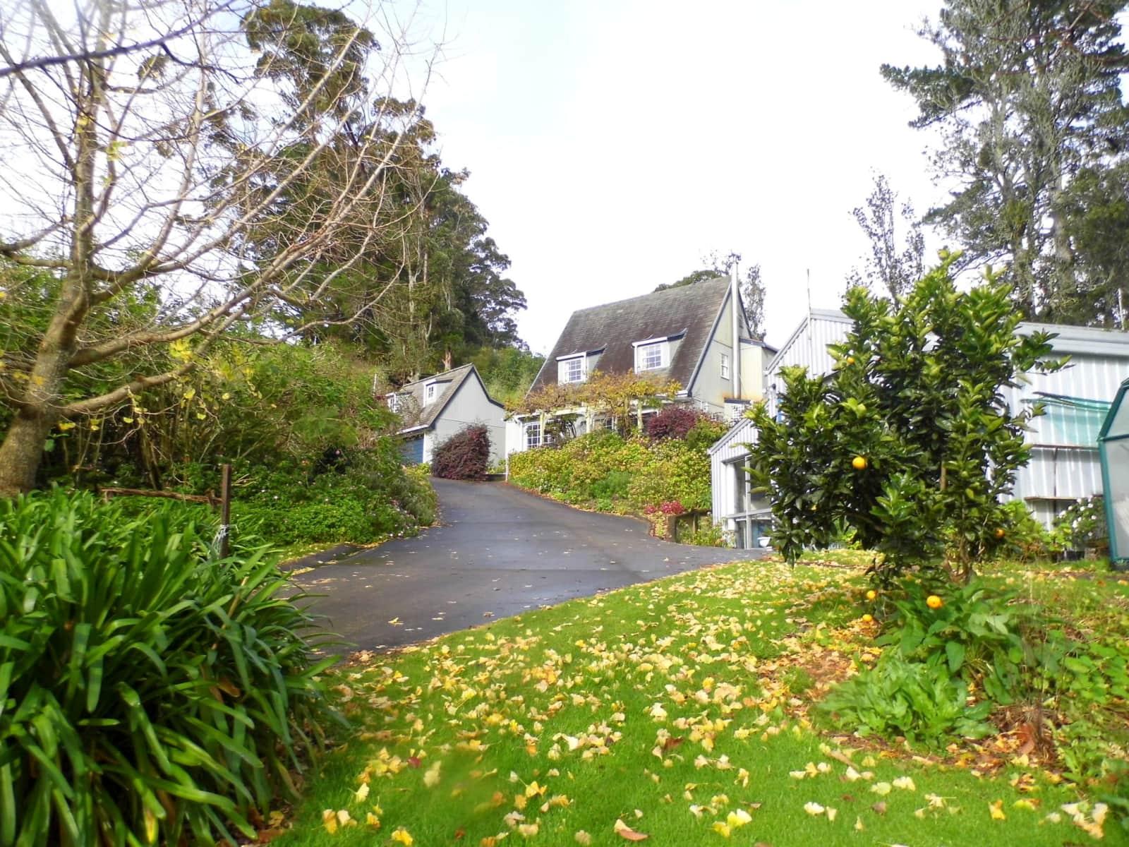 Housesitting assignment in Katikati, New Zealand