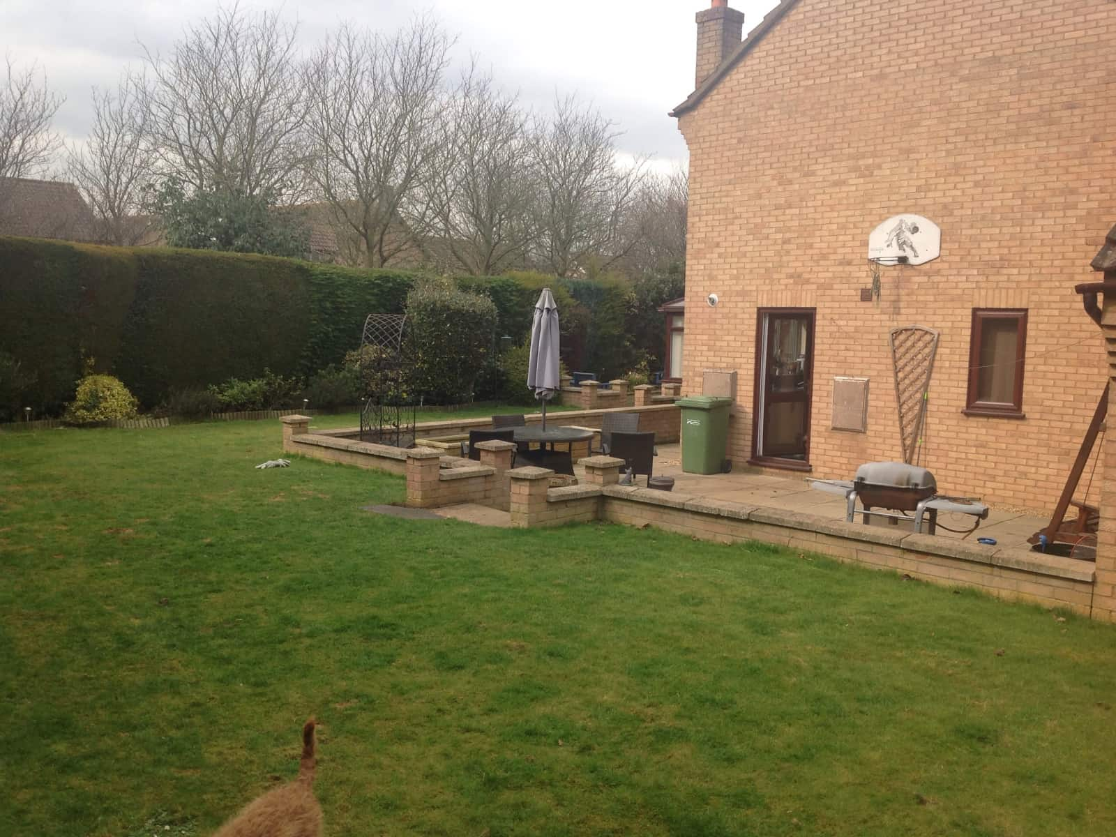 Housesitting assignment in Peterborough, United Kingdom