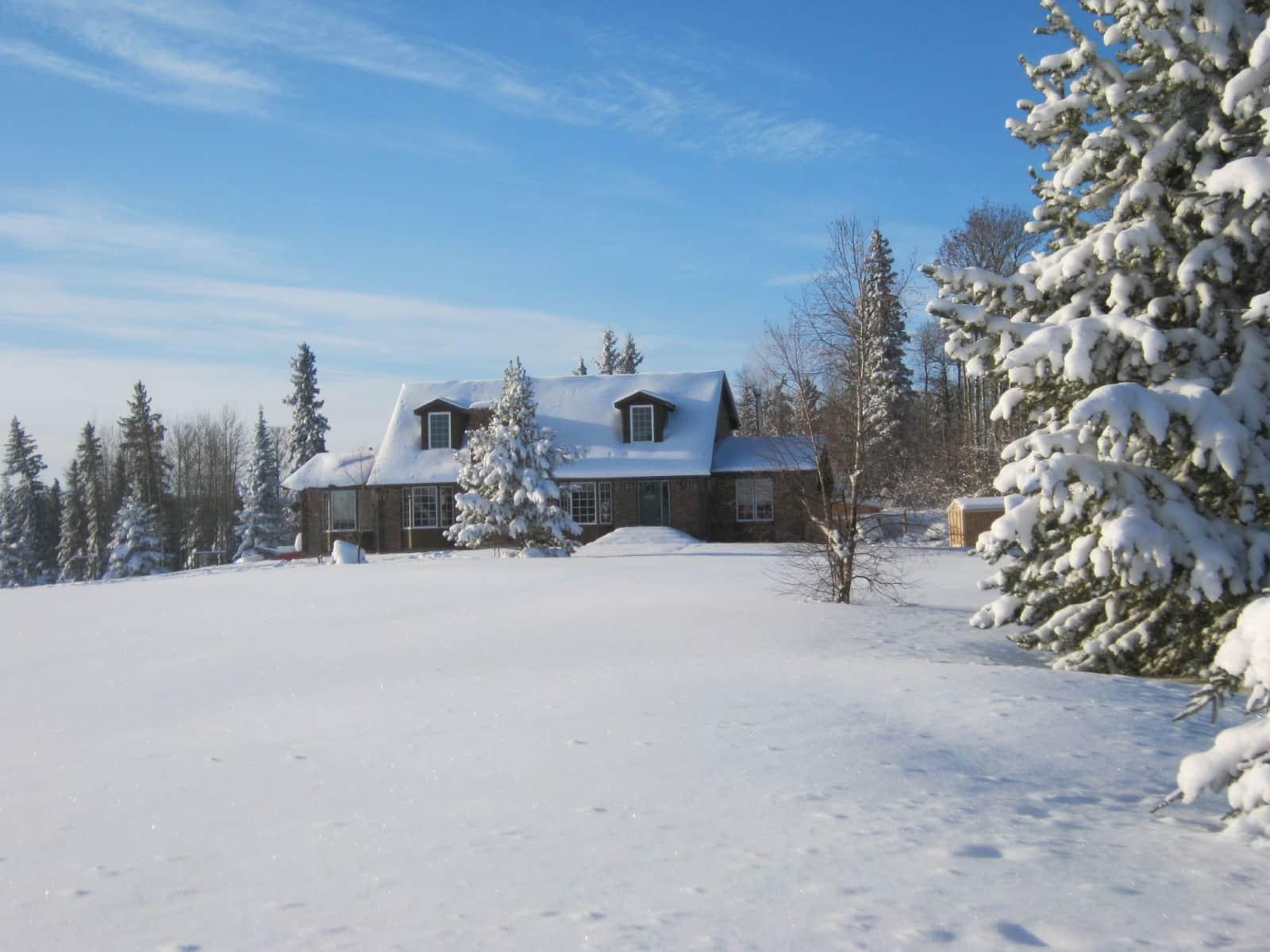 Housesitting assignment in Whitecourt, Alberta, Canada