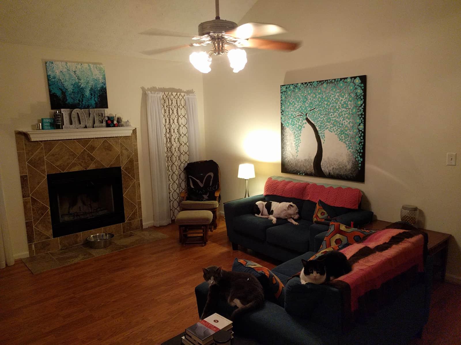 Housesitting assignment in Stockbridge, Georgia, United States