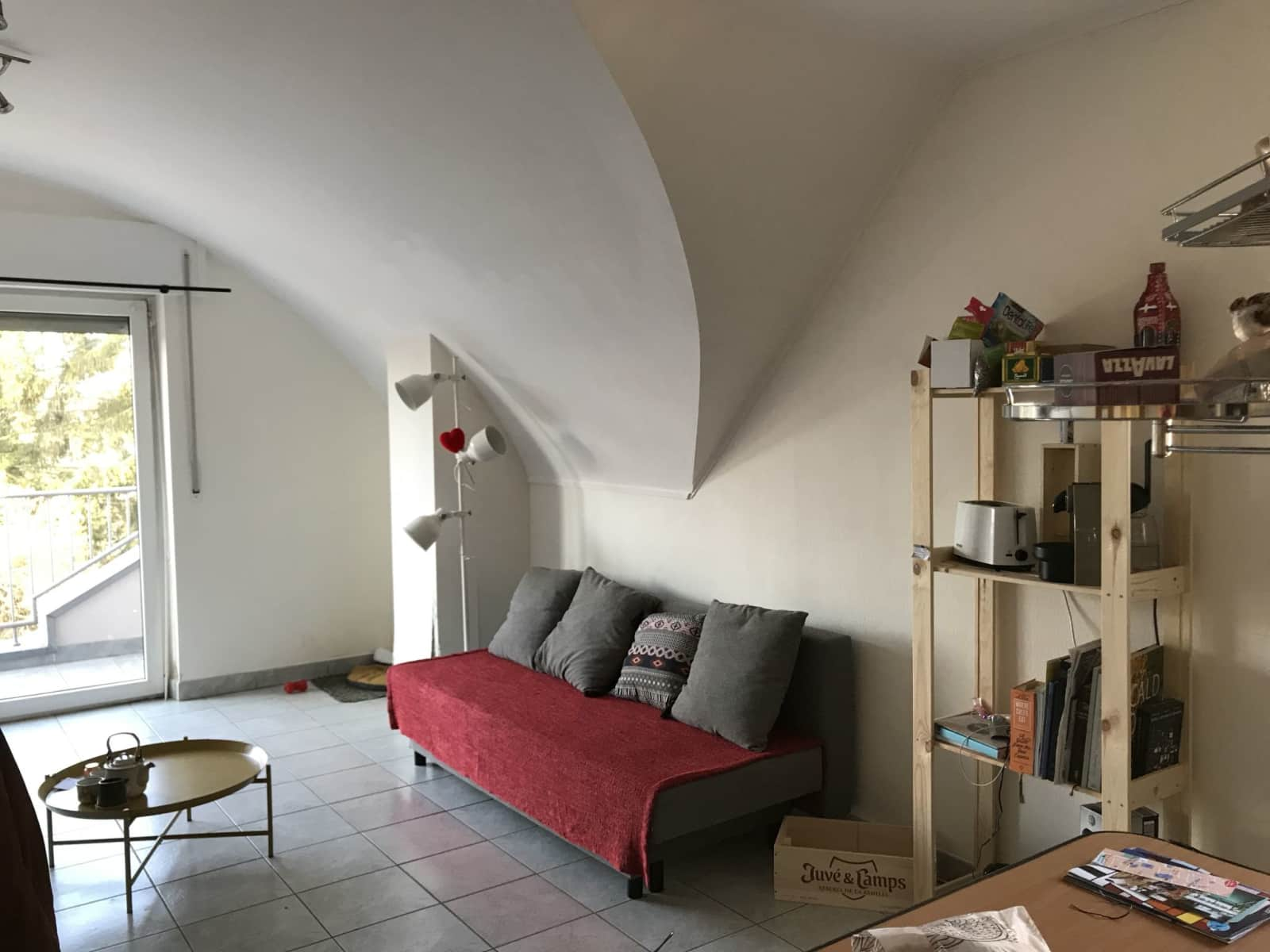 Housesitting assignment in Esch-sur-Alzette, Luxembourg