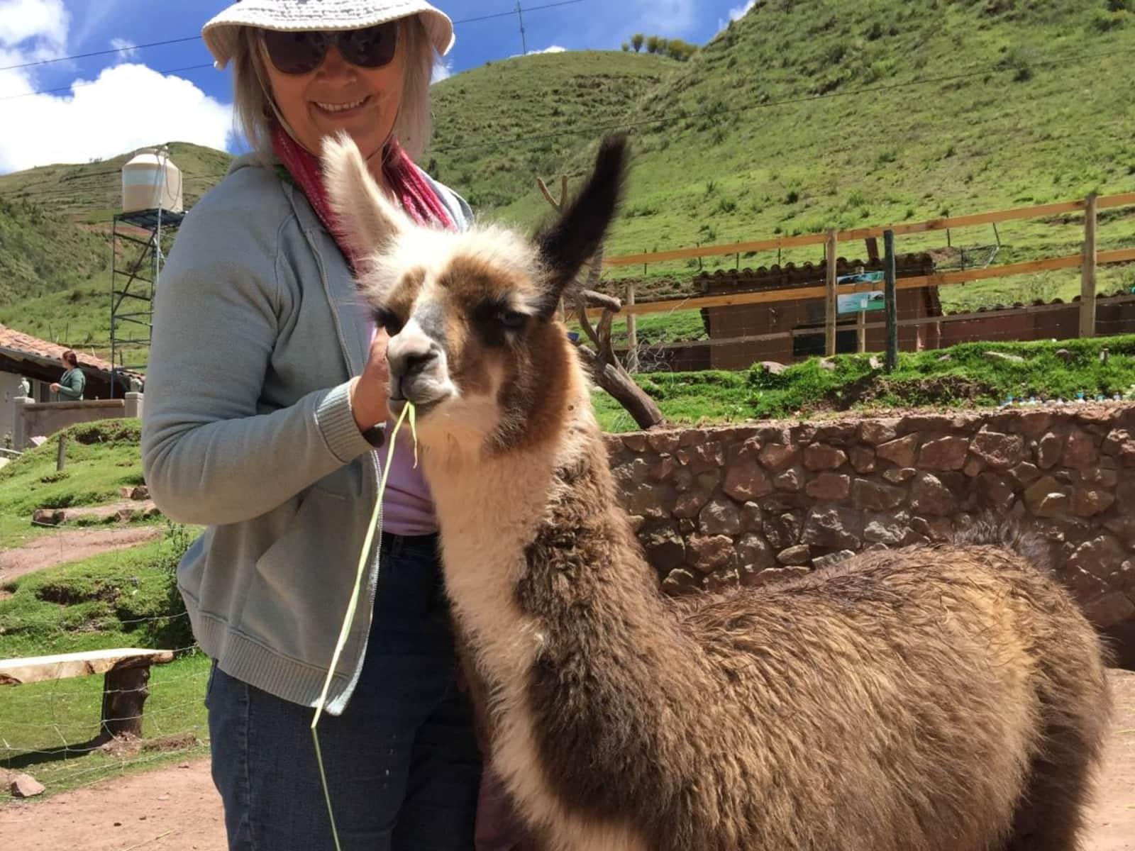 Linda from Albuquerque, New Mexico, United States