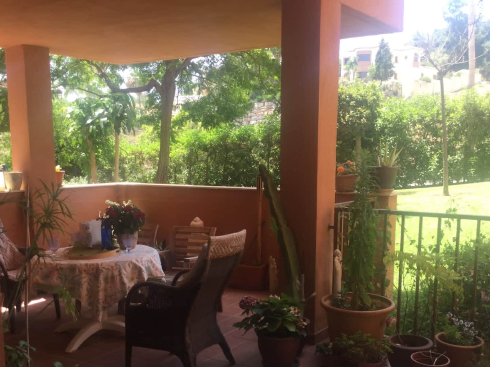 Housesitting assignment in Marbella, Spain