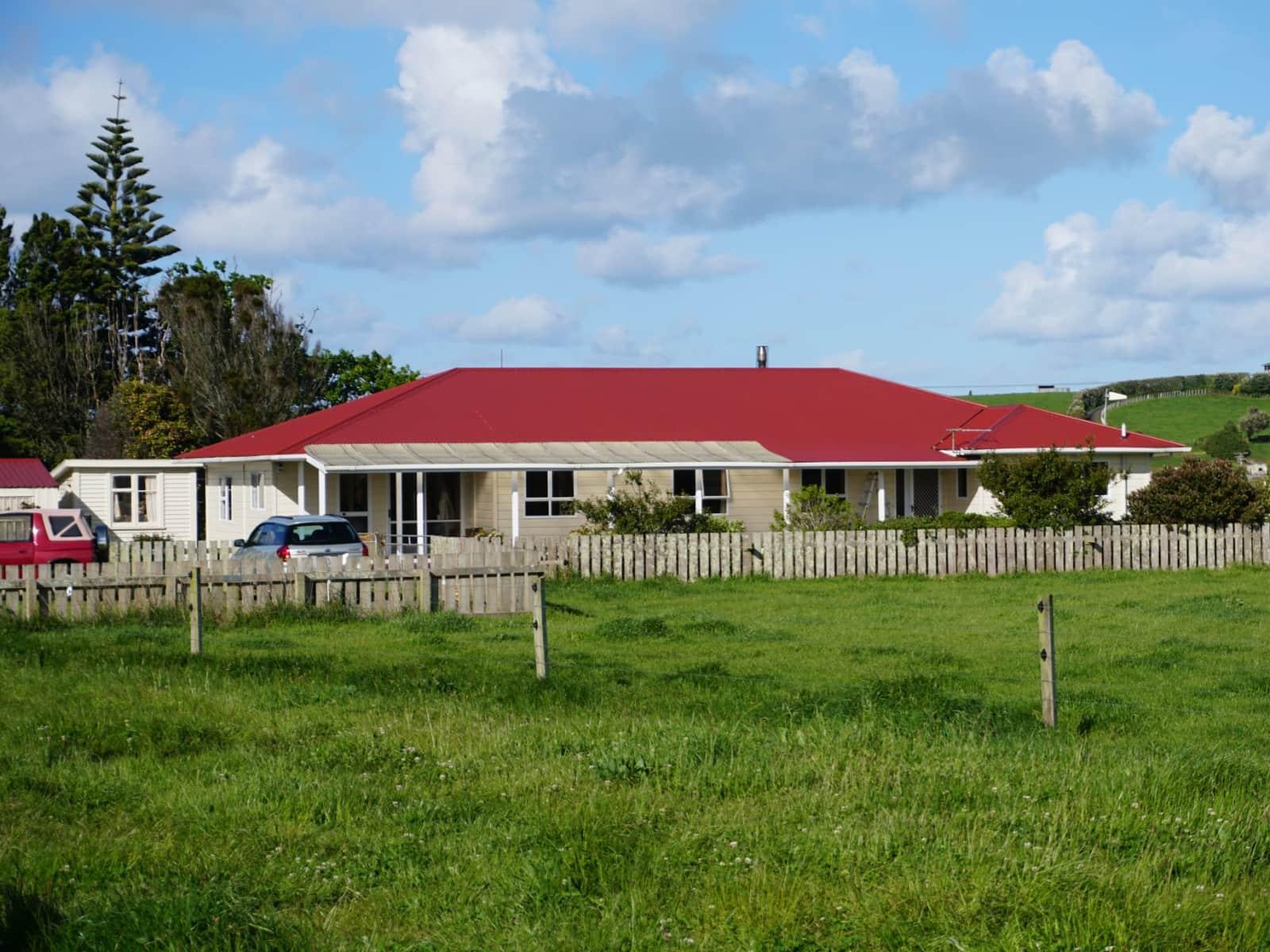 Housesitting assignment in Hawera, New Zealand