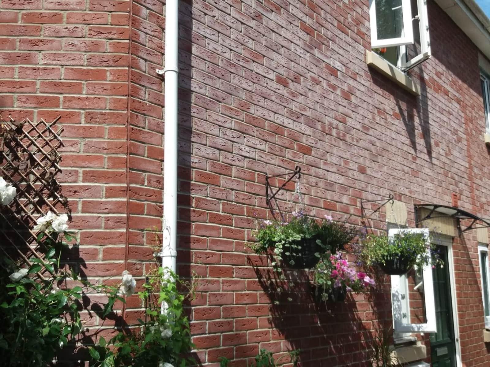 Housesitting assignment in Glastonbury, United Kingdom