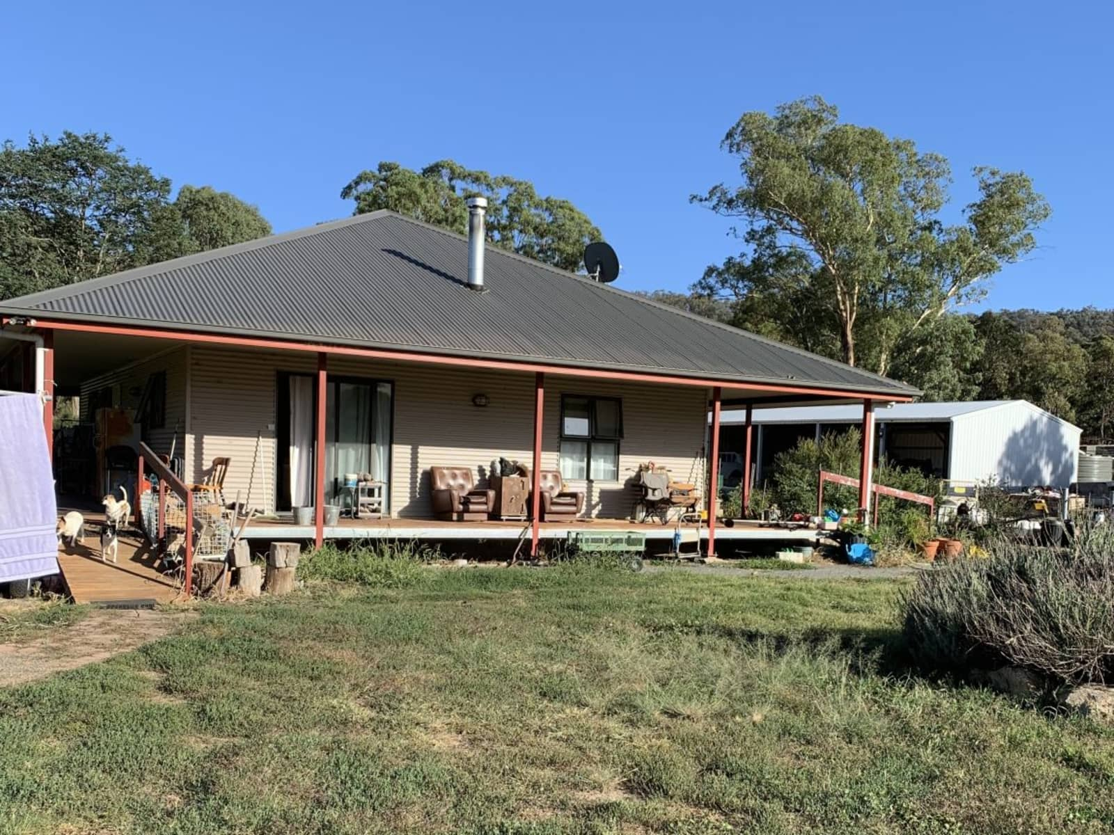 Housesitting assignment in Michelago, New South Wales, Australia
