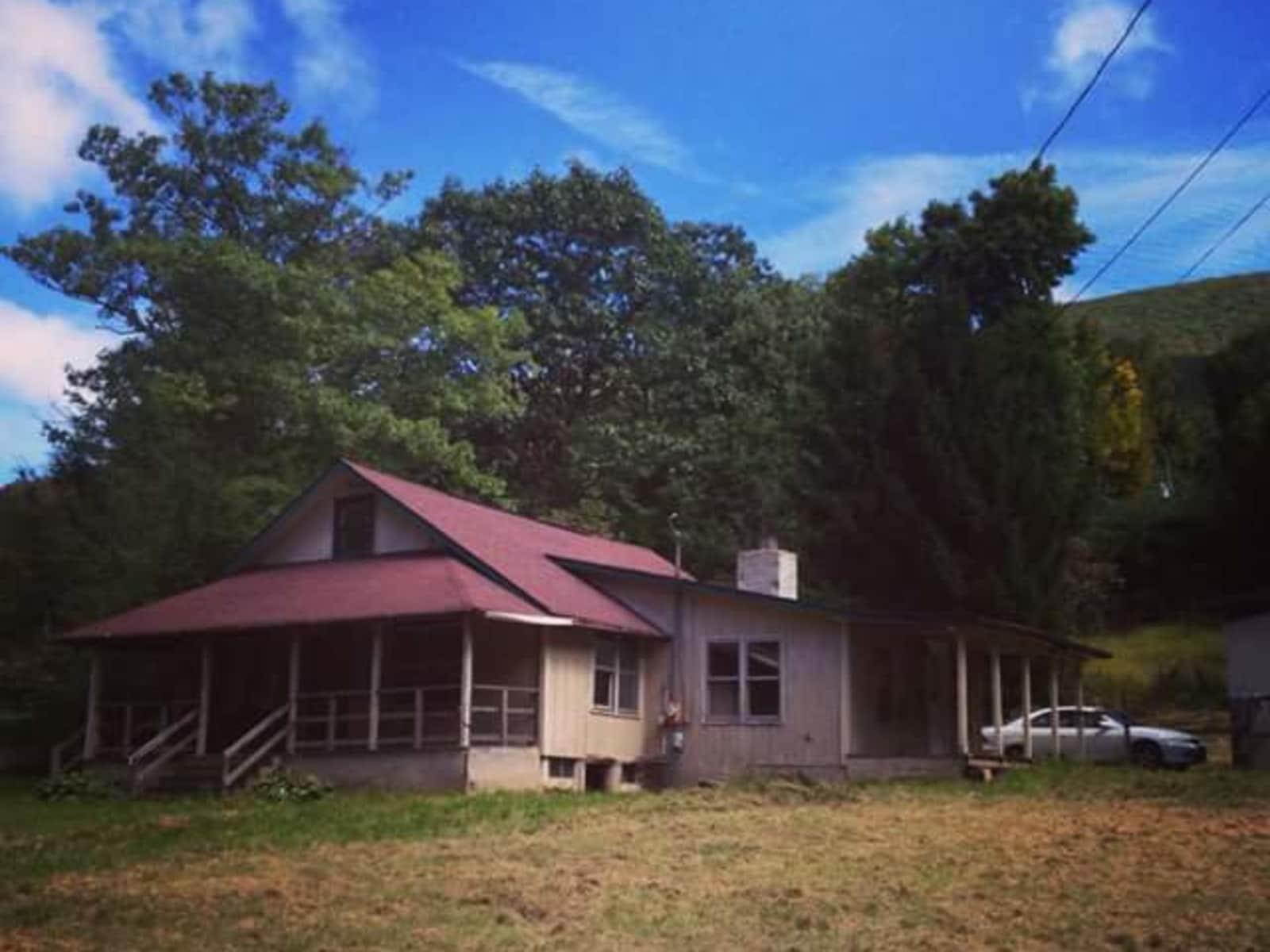 Housesitting assignment in Boone, North Carolina, United States