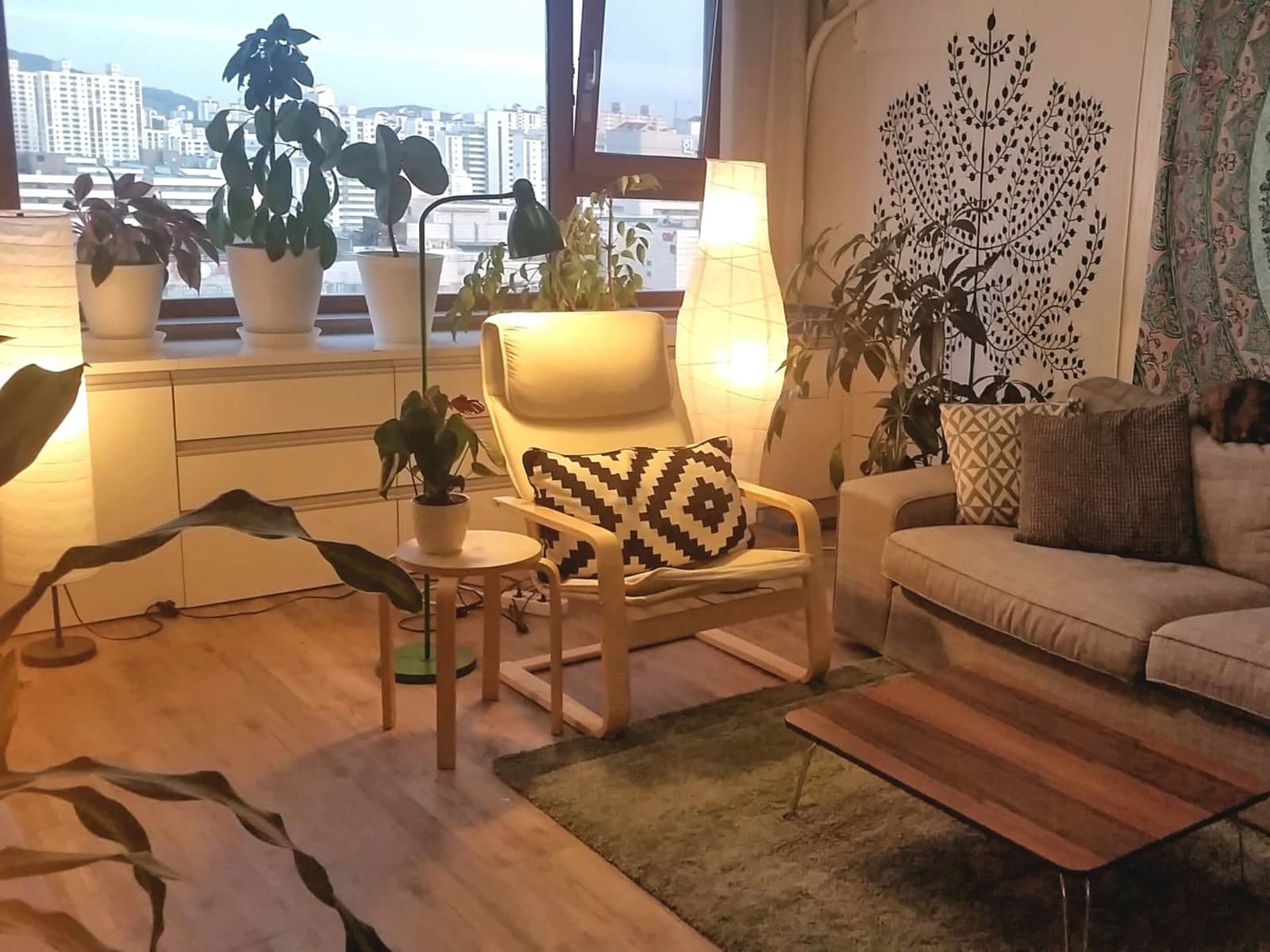 Housesitting assignment in Pyeongchon, South Korea