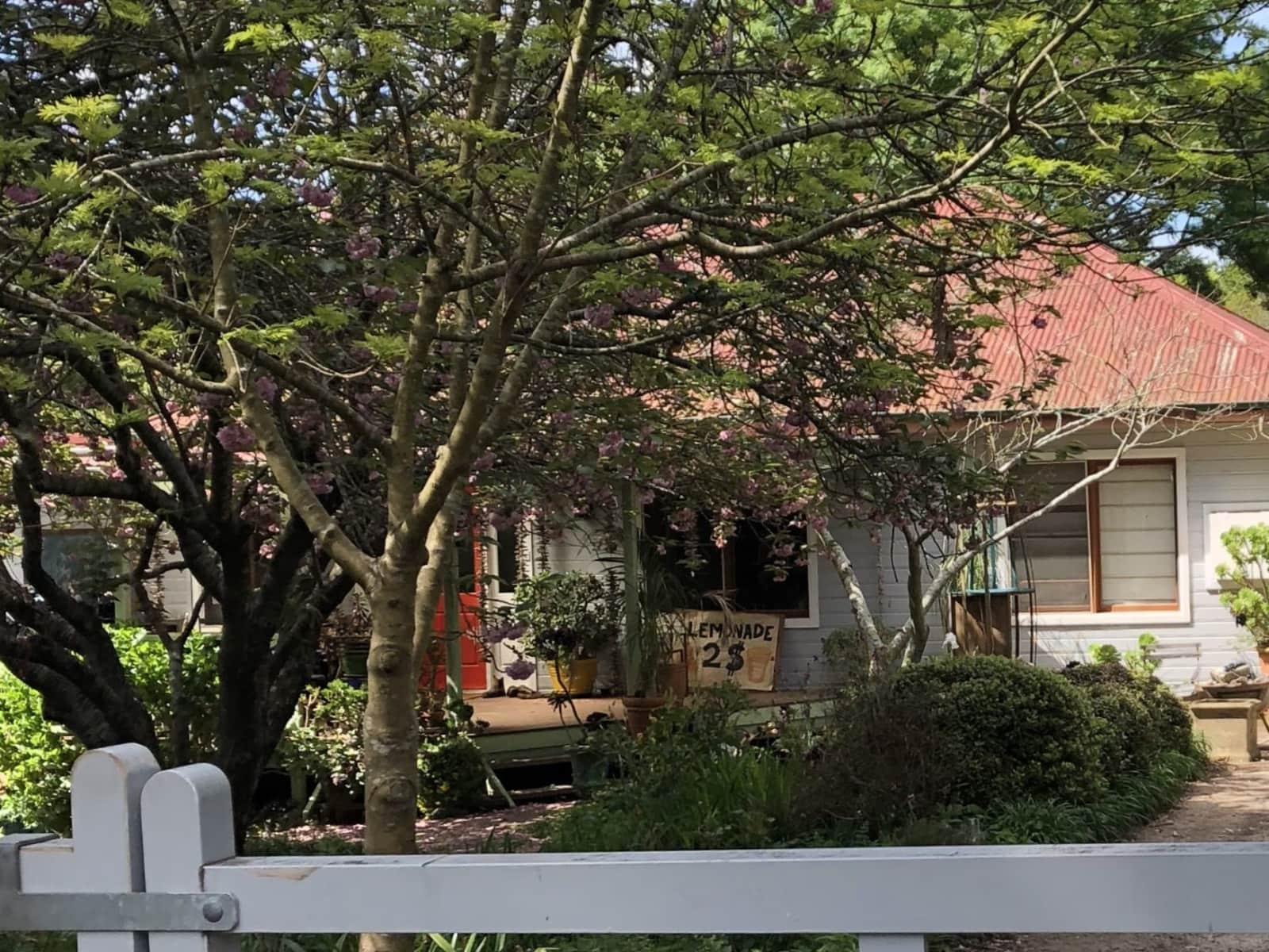 Housesitting assignment in Bundanoon, New South Wales, Australia