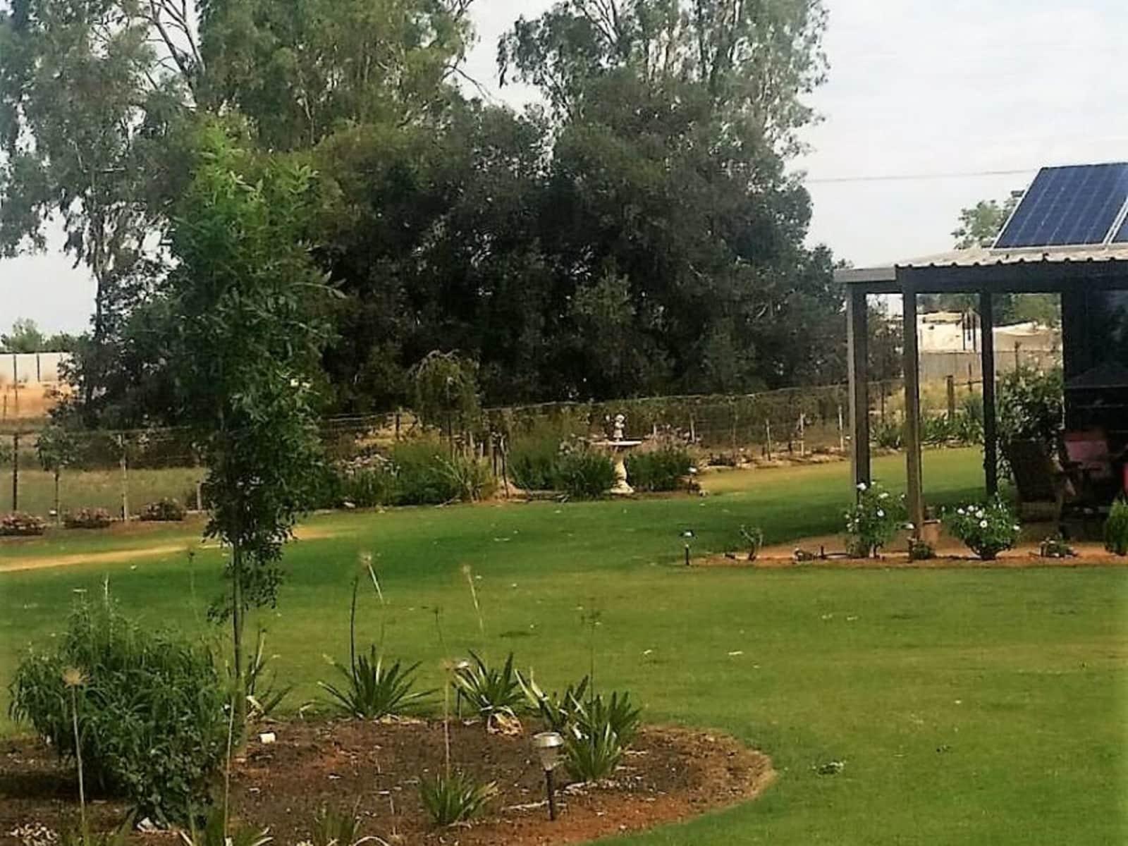 Housesitting assignment in Mildura, Victoria, Australia