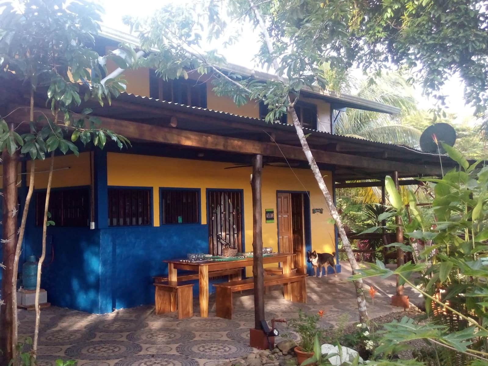 Housesitting assignment in Matapalo, Costa Rica