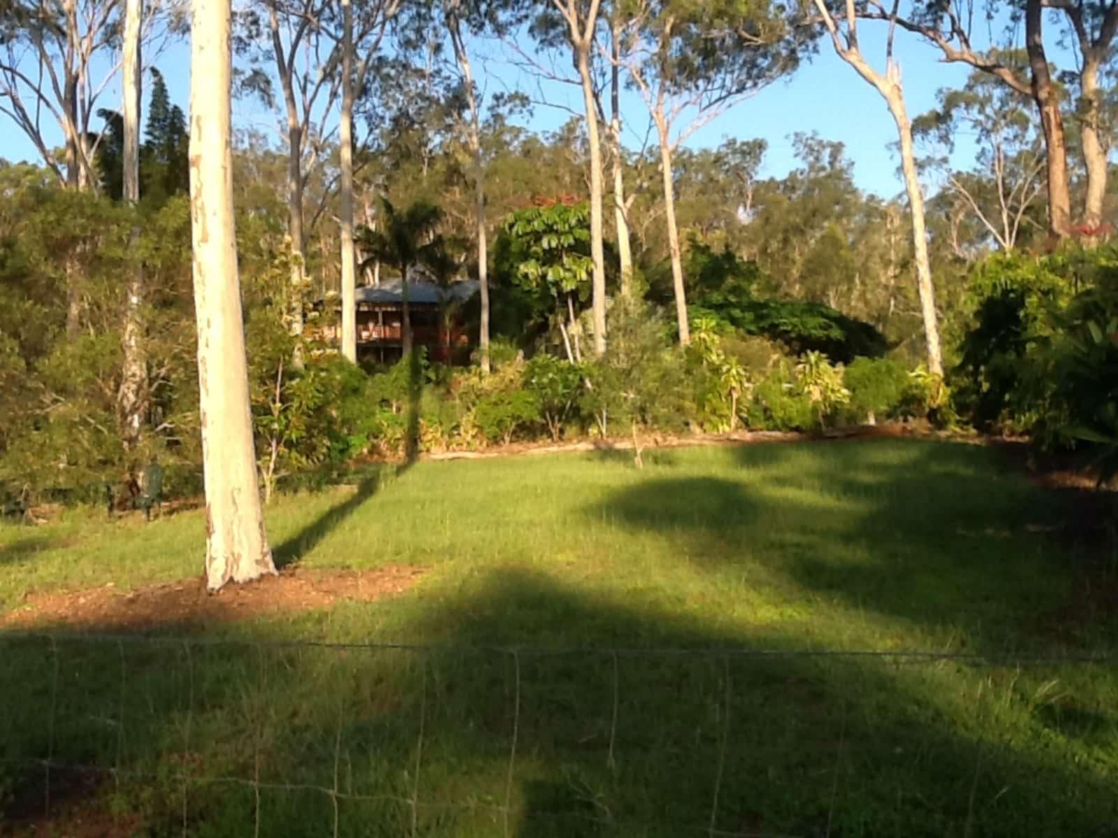 Housesitting assignment in West Stowe, Queensland, Australia