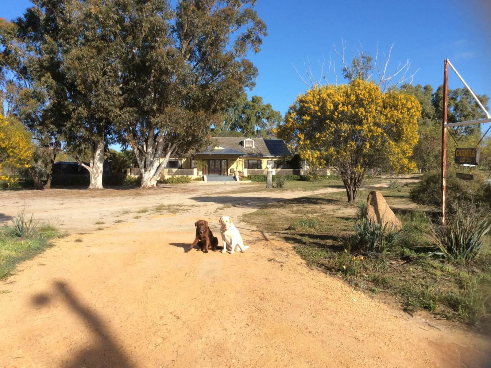 Housesitting assignment in Korrelocking, Western Australia, Australia