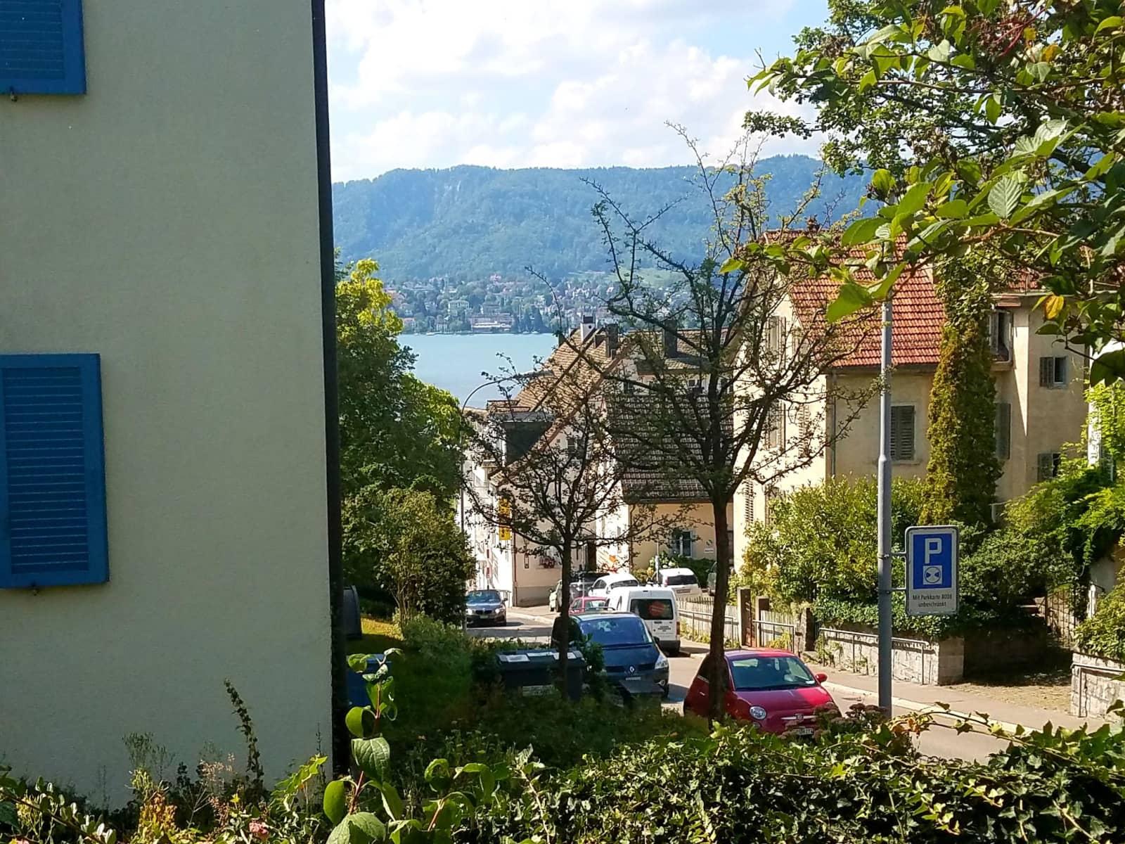 Housesitting assignment in Zürich (Kreis 8) / Weinegg, Switzerland