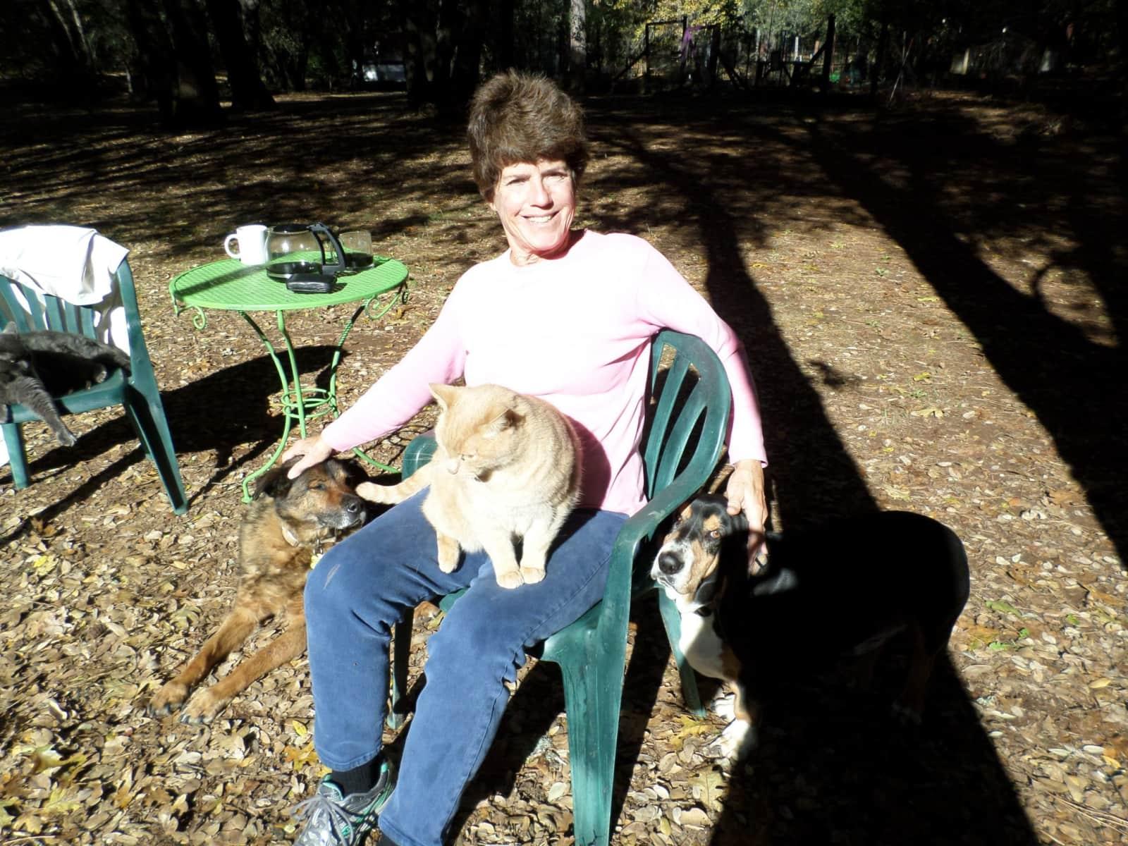 Donna from Sacramento, California, United States