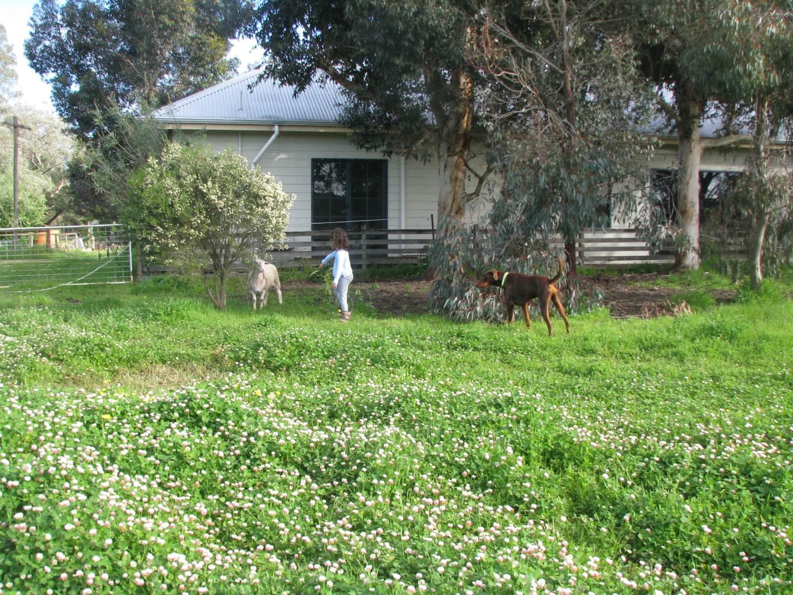 Housesitting assignment in Ludlow, Western Australia, Australia