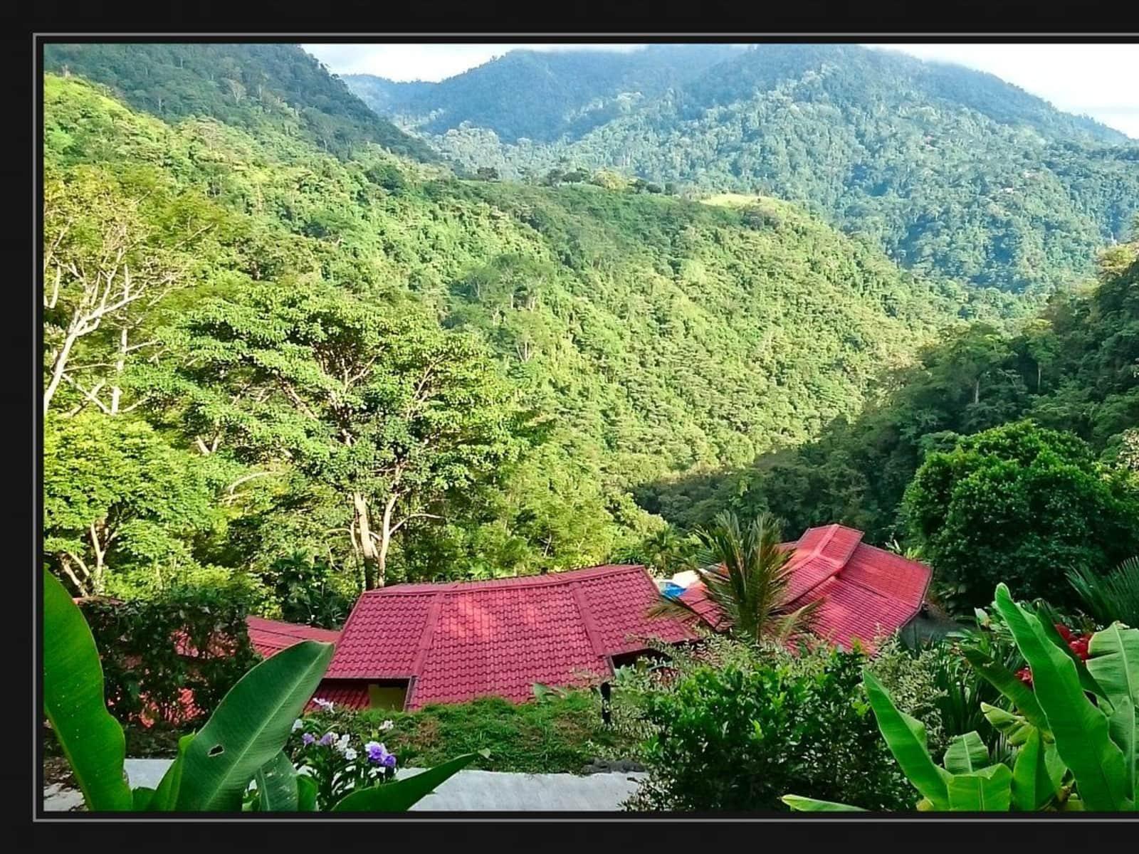Housesitting assignment in Uvita, Costa Rica