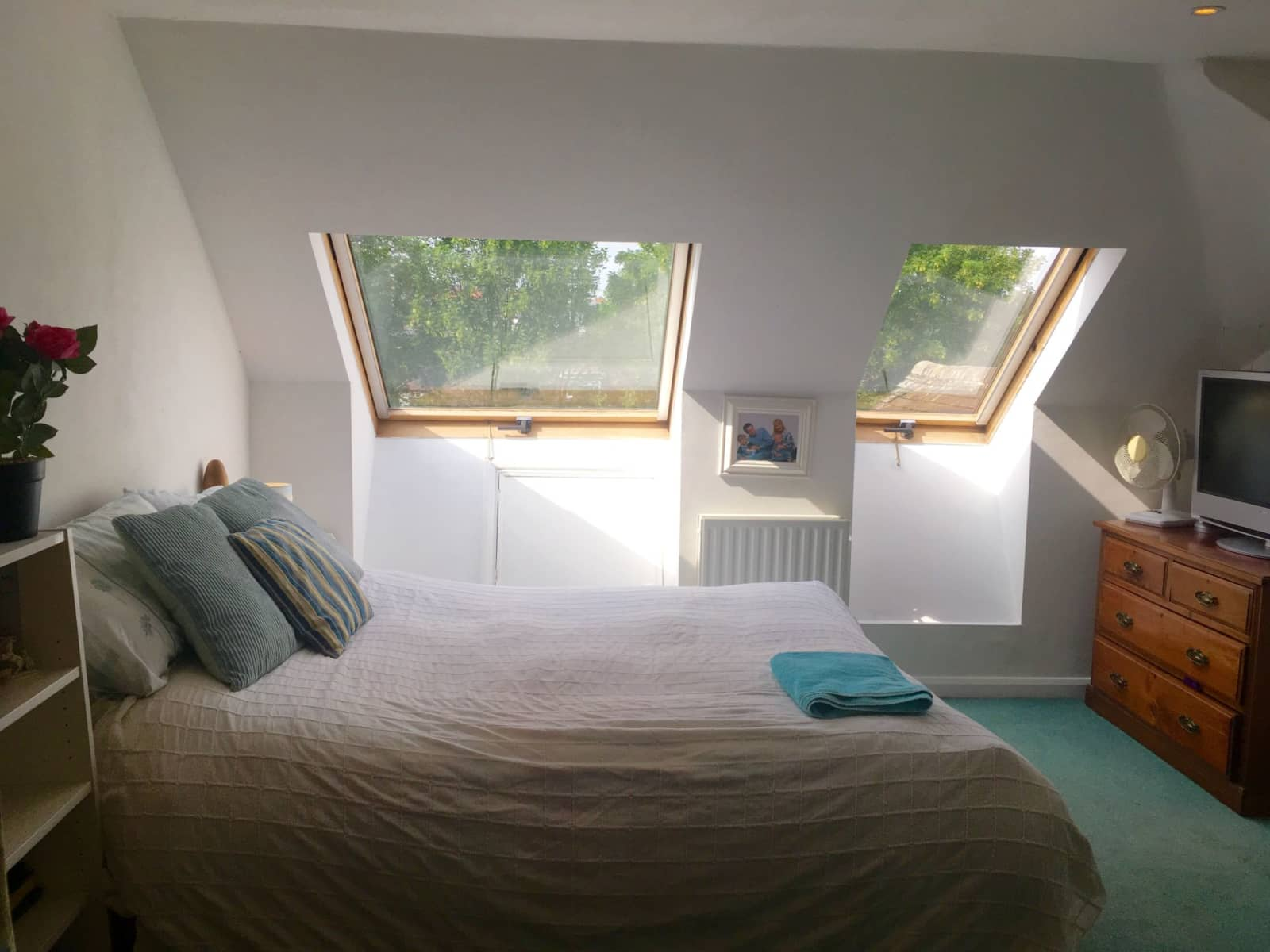 Housesitting assignment in Southfields, United Kingdom