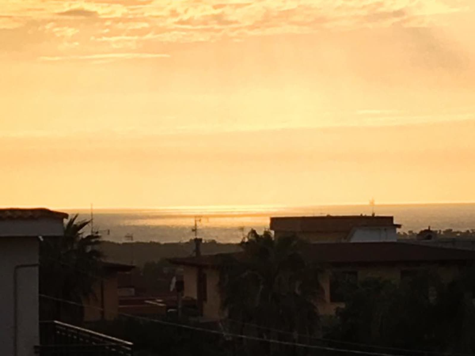 Housesitting assignment in Napoli, Italy