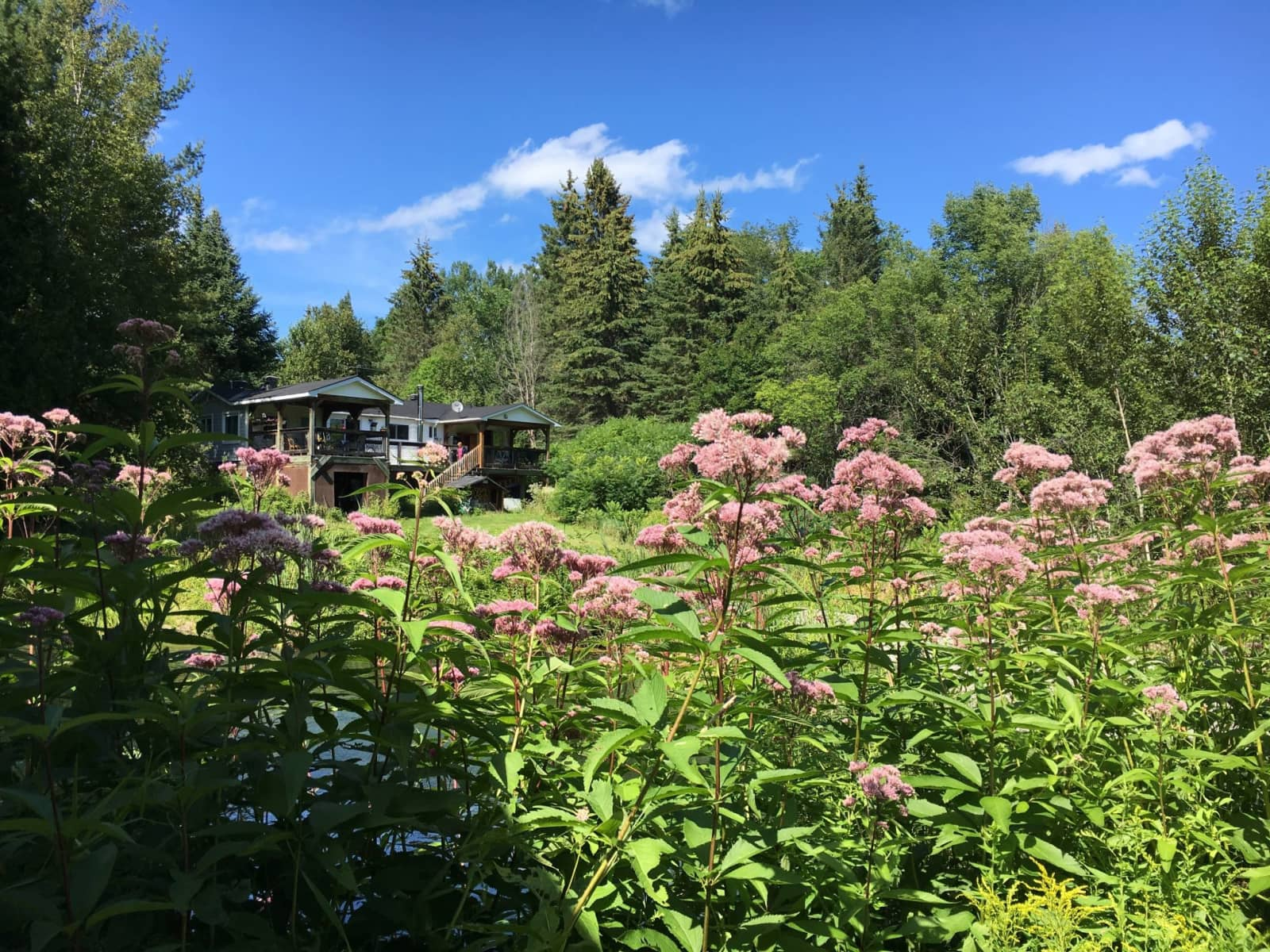 Housesitting assignment in Val-des-Monts, Quebec, Canada