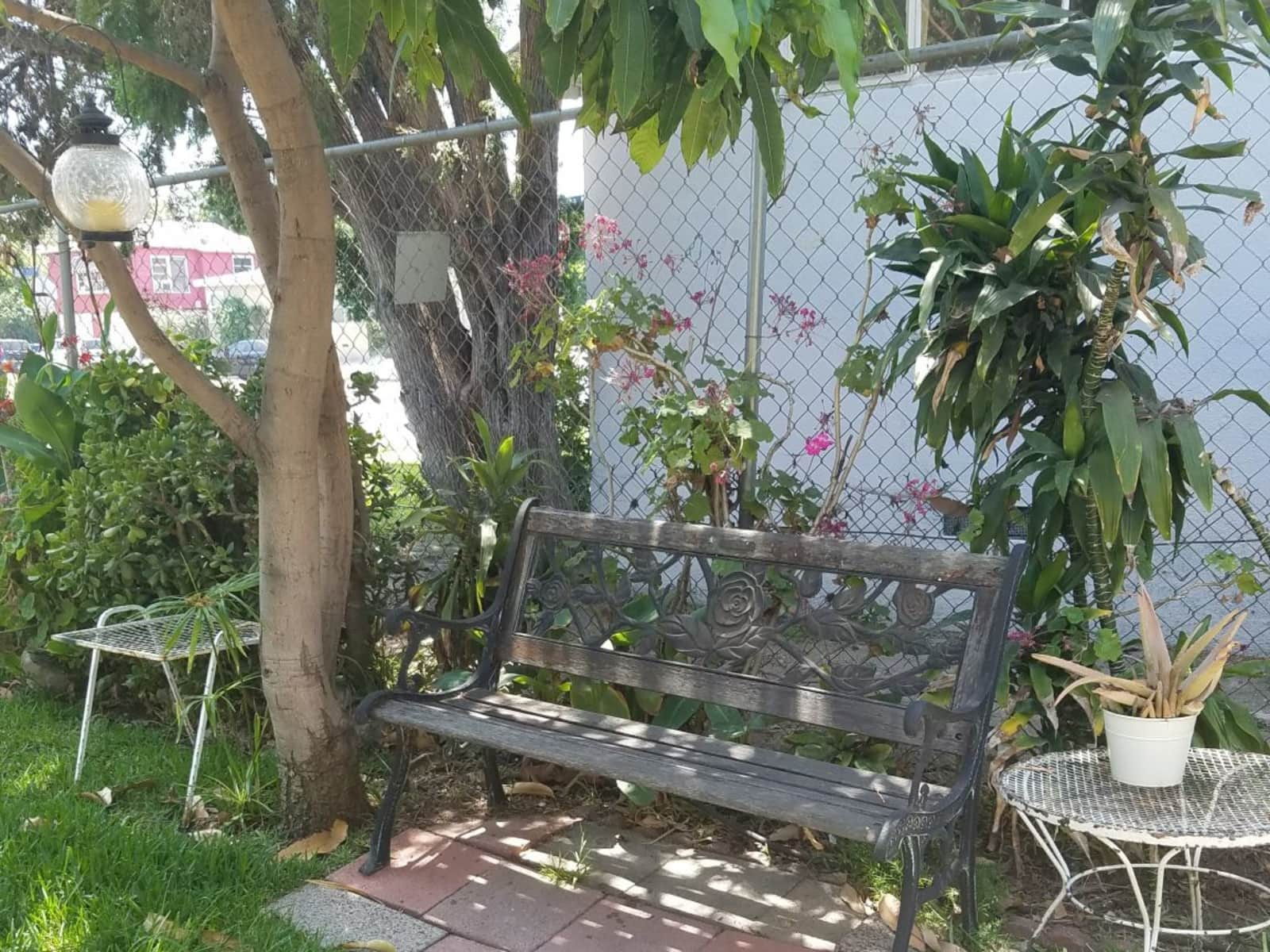 Housesitting assignment in North Hollywood, California, United States