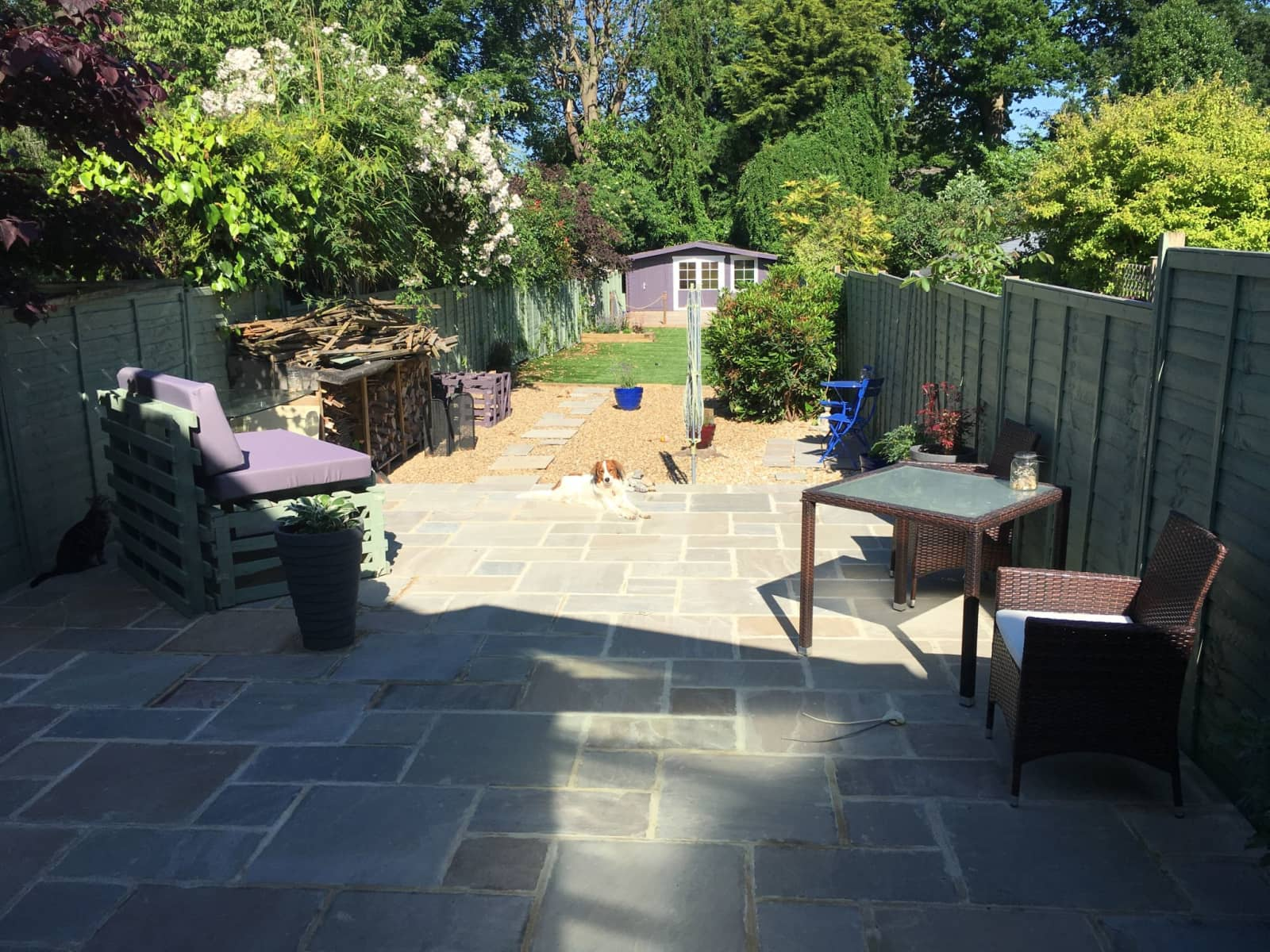 Housesitting assignment in Horsham, United Kingdom