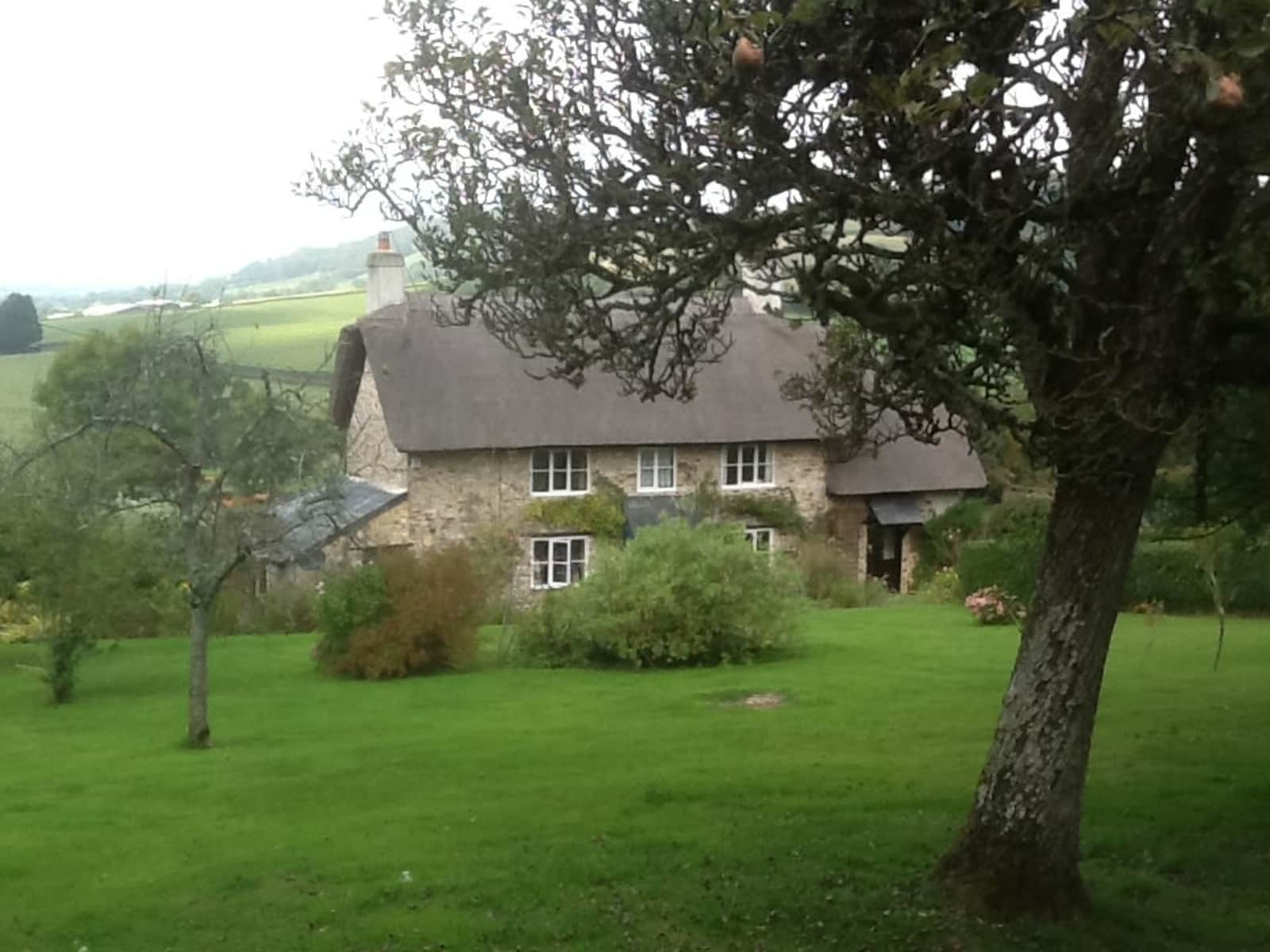 Housesitting assignment in Axminster, United Kingdom