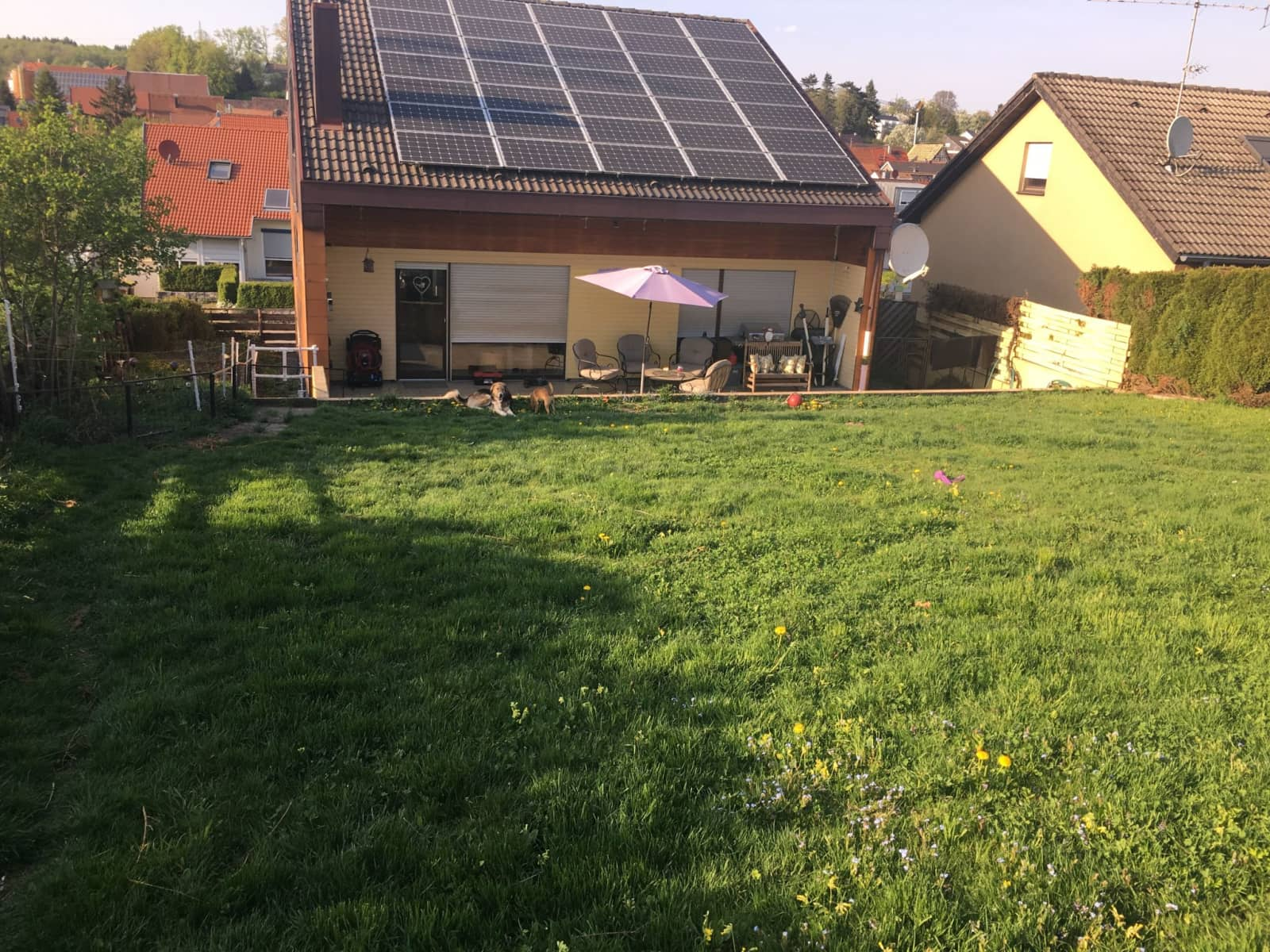 Housesitting assignment in Ohmden, Germany