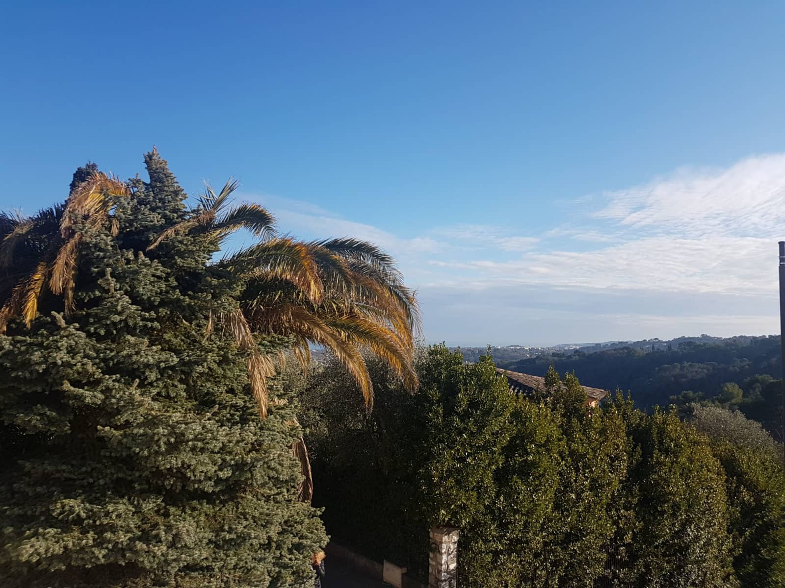 Housesitting assignment in Biot, France