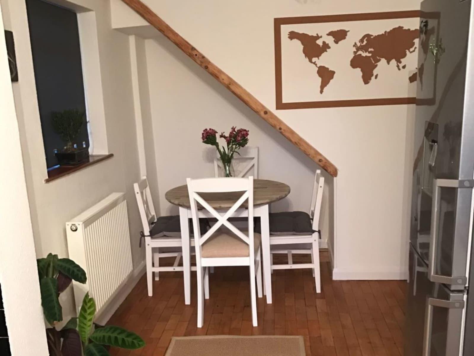Housesitting assignment in Falmer, United Kingdom