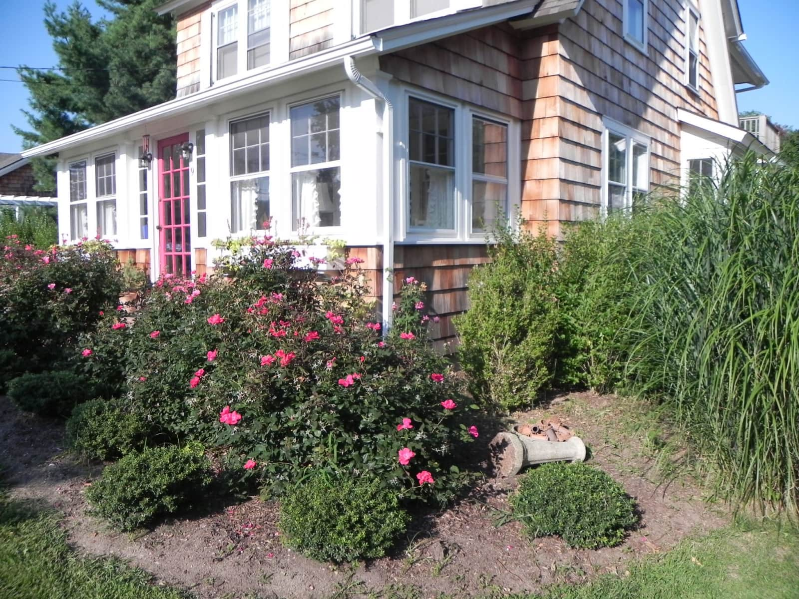 Housesitting assignment in Bellport, New York, United States