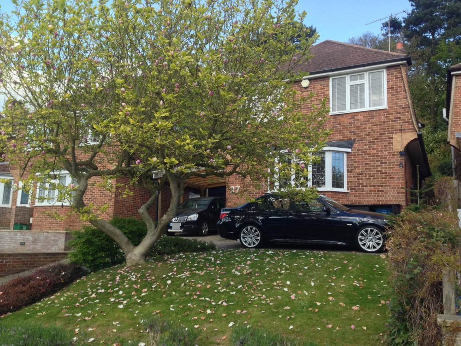 Housesitting assignment in South Croydon, United Kingdom