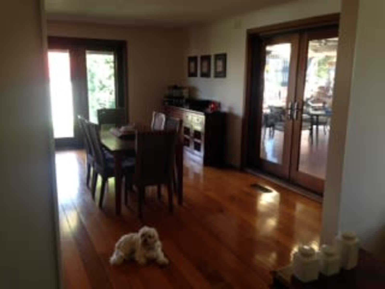 Housesitting assignment in Craigieburn, Victoria, Australia