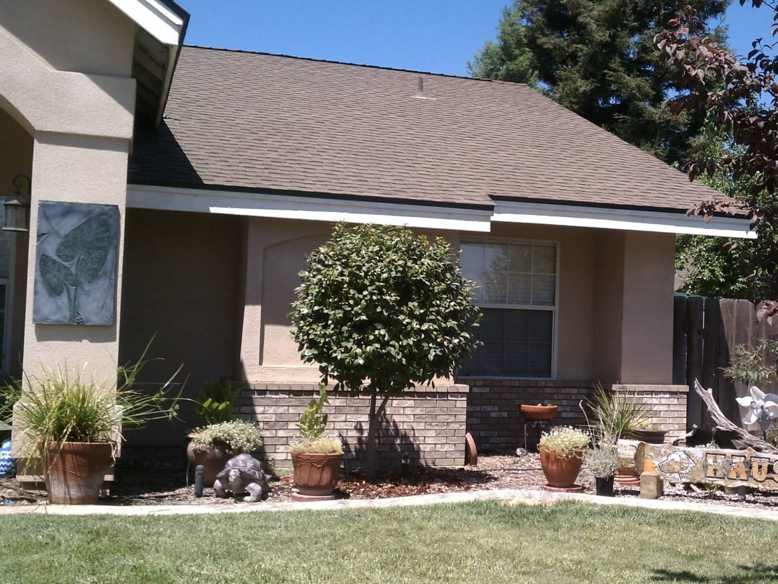 Housesitting assignment in Visalia, California, United States