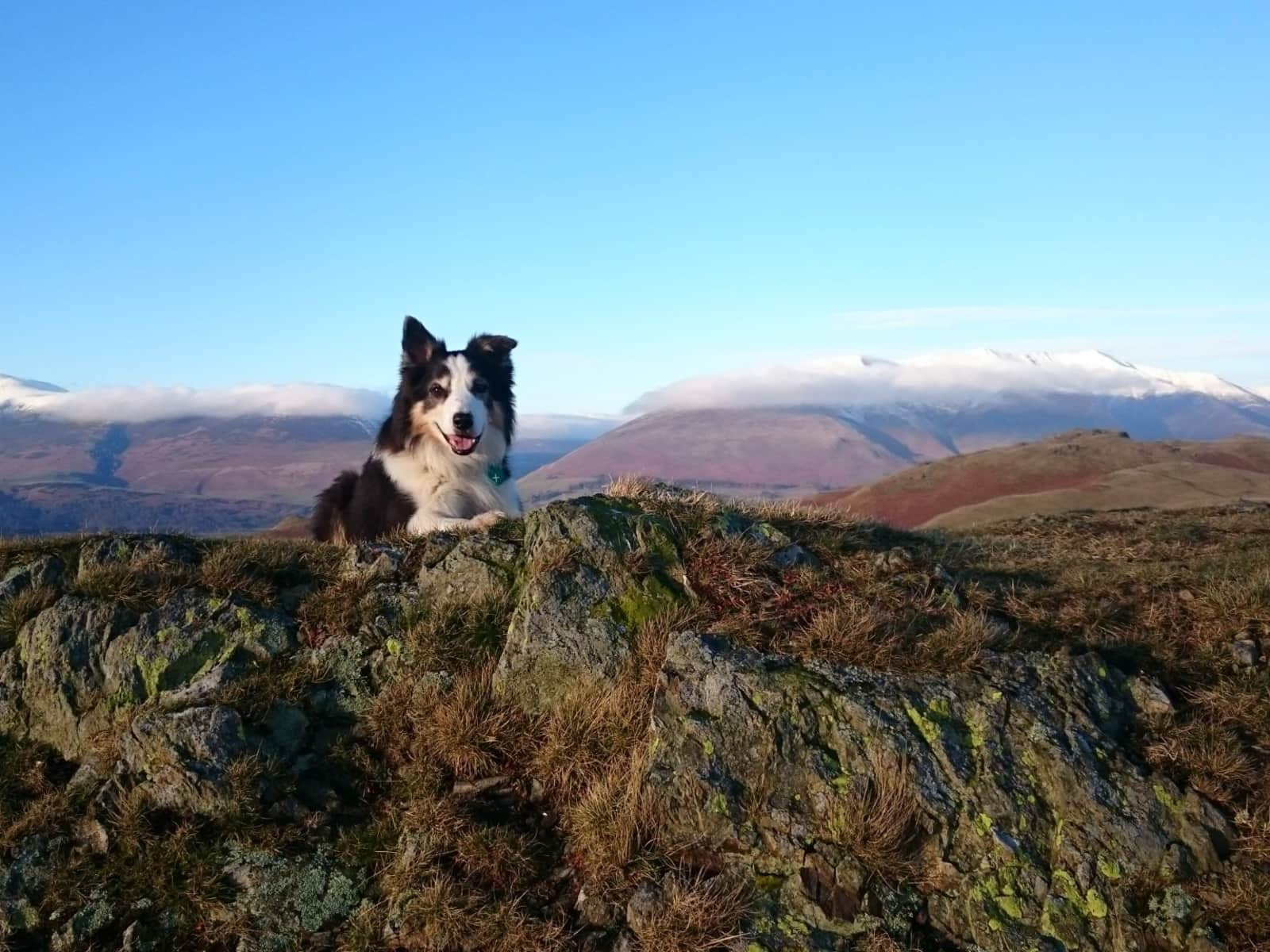 Housesitting assignment in Keswick, United Kingdom