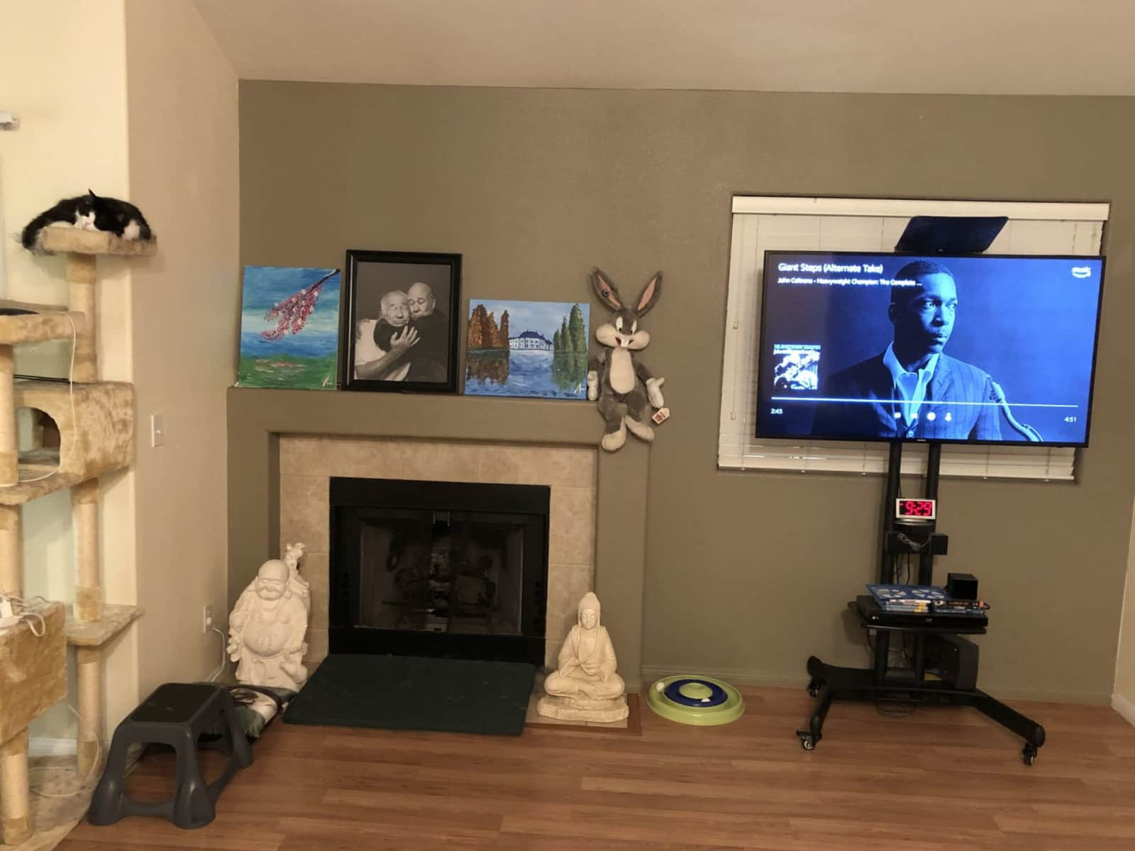 Housesitting assignment in Henderson, Nevada, United States