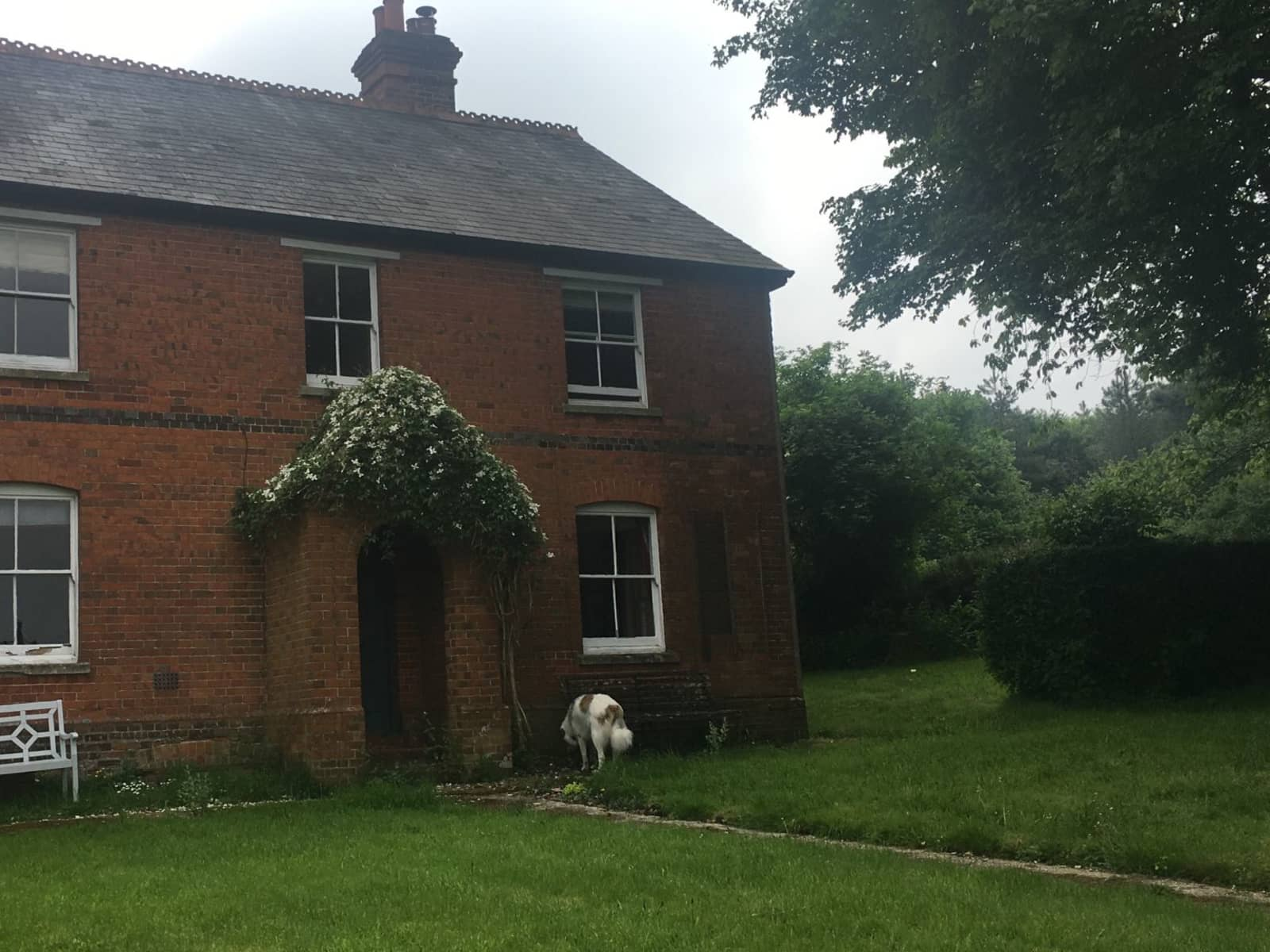 Housesitting assignment in Highclere, United Kingdom