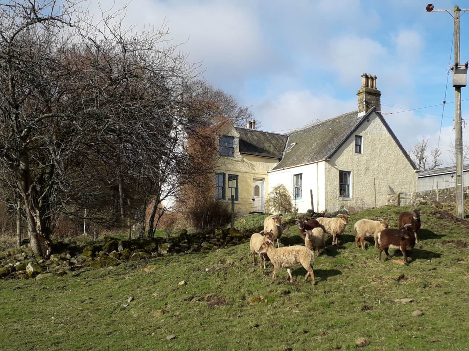 Housesitting assignment in Kinross, United Kingdom