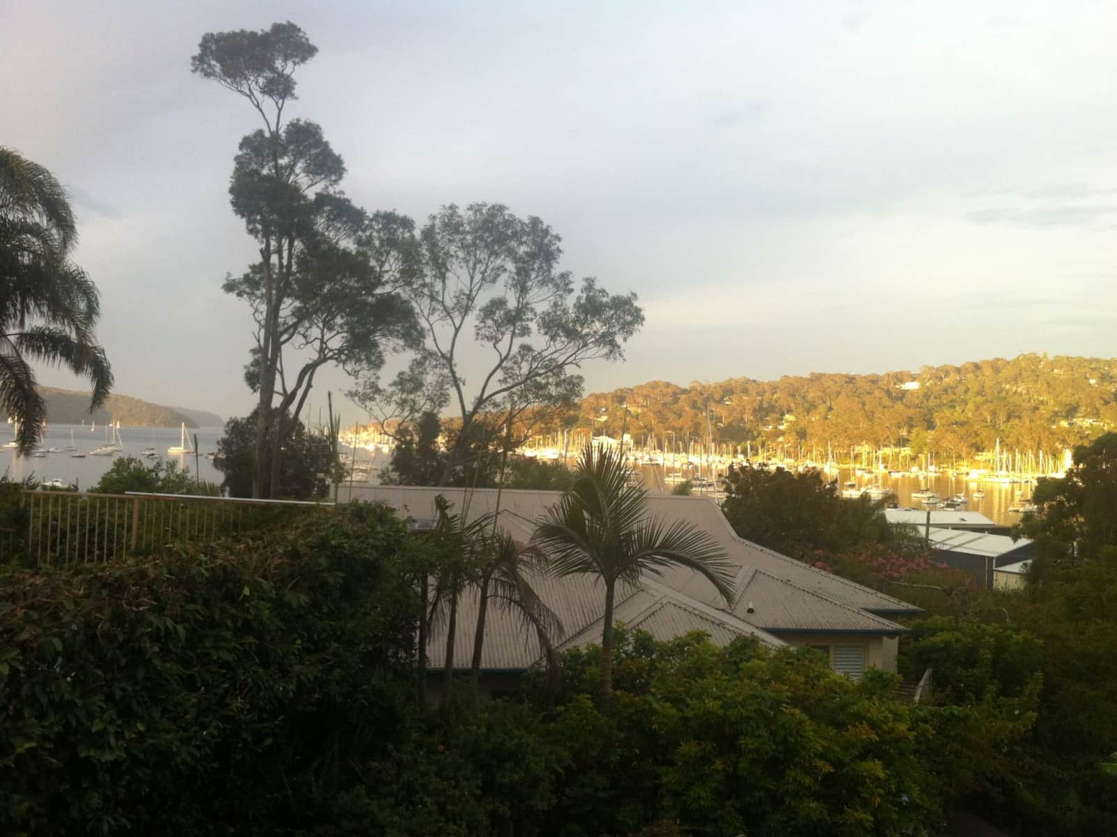 Housesitting assignment in Bay View, New South Wales, Australia