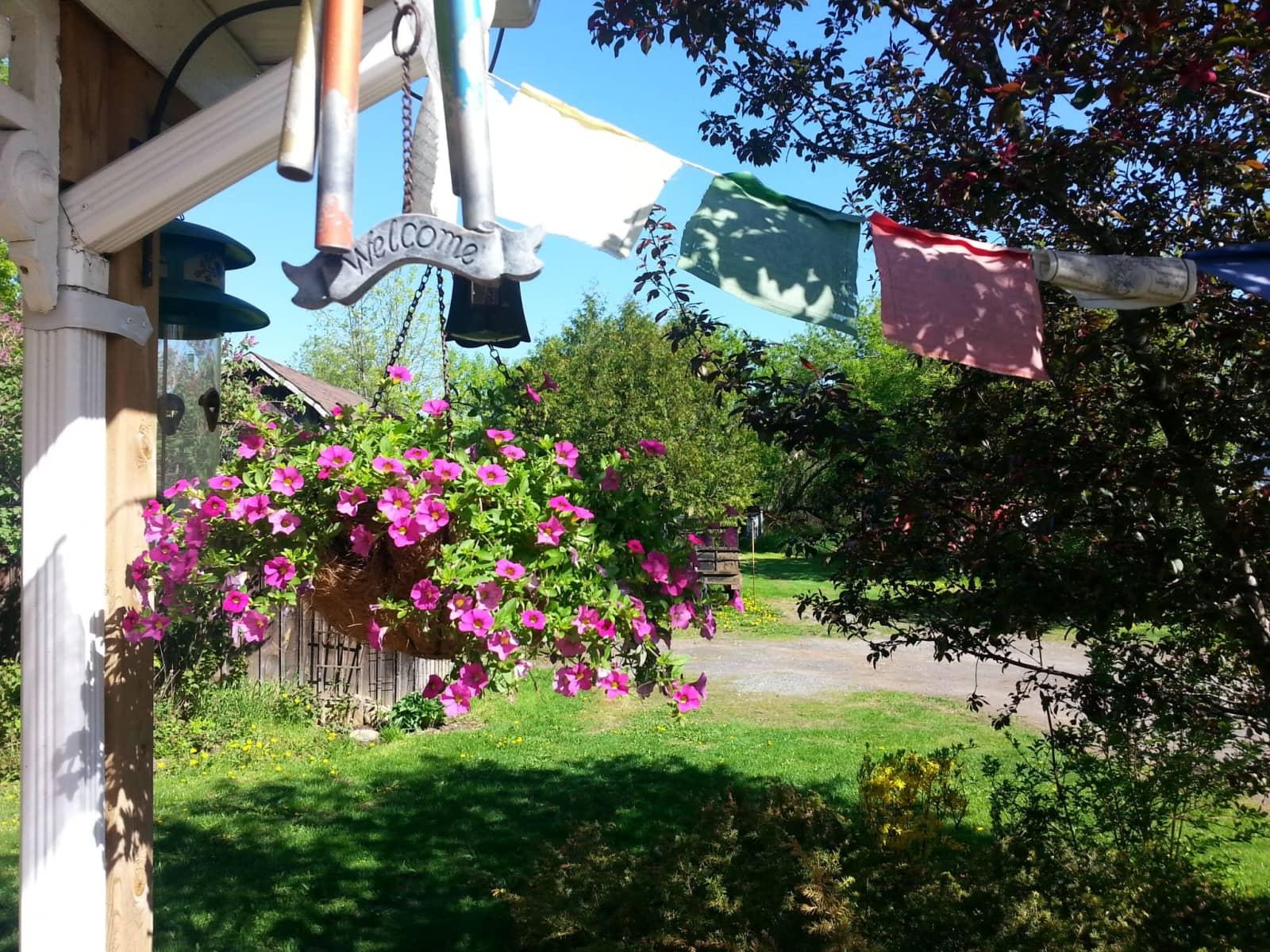 Housesitting assignment in Ottawa, Ontario, Canada
