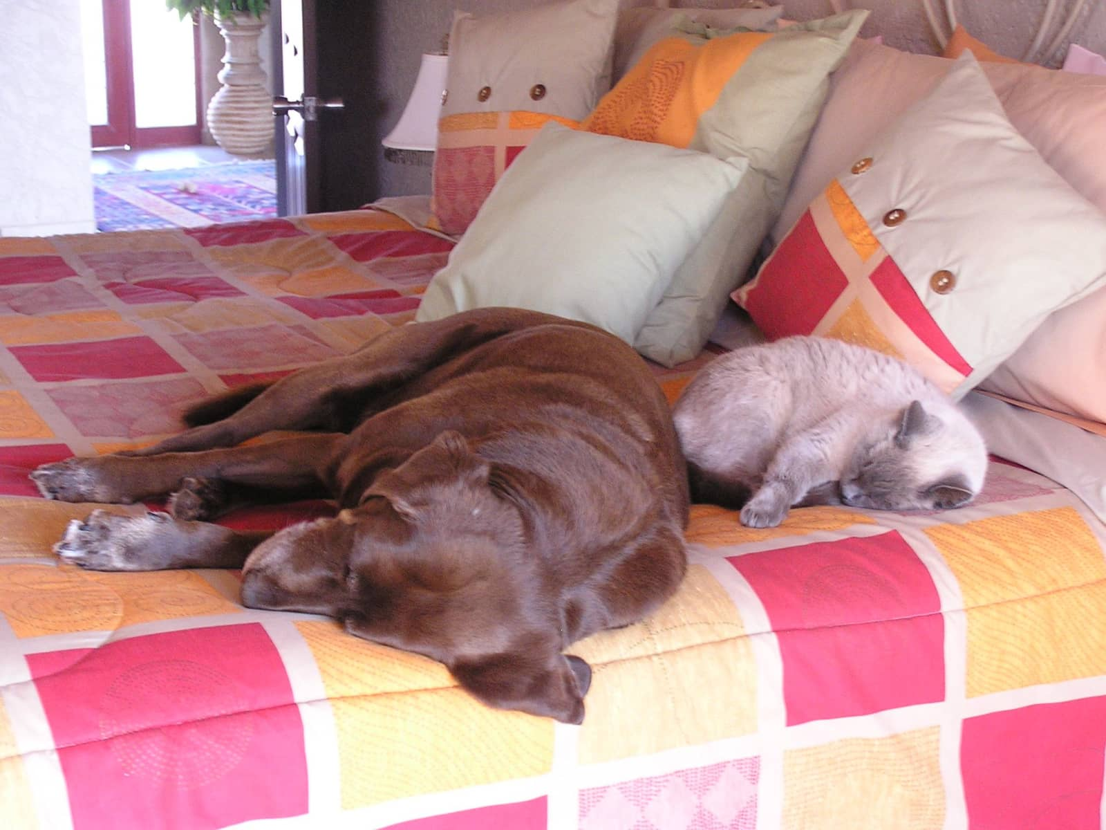 John & carole & Carole ann from Ajijic, Mexico