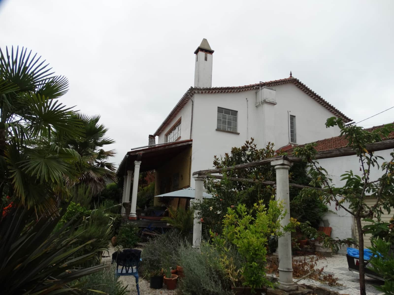 Housesitting assignment in Marmeleira, Portugal