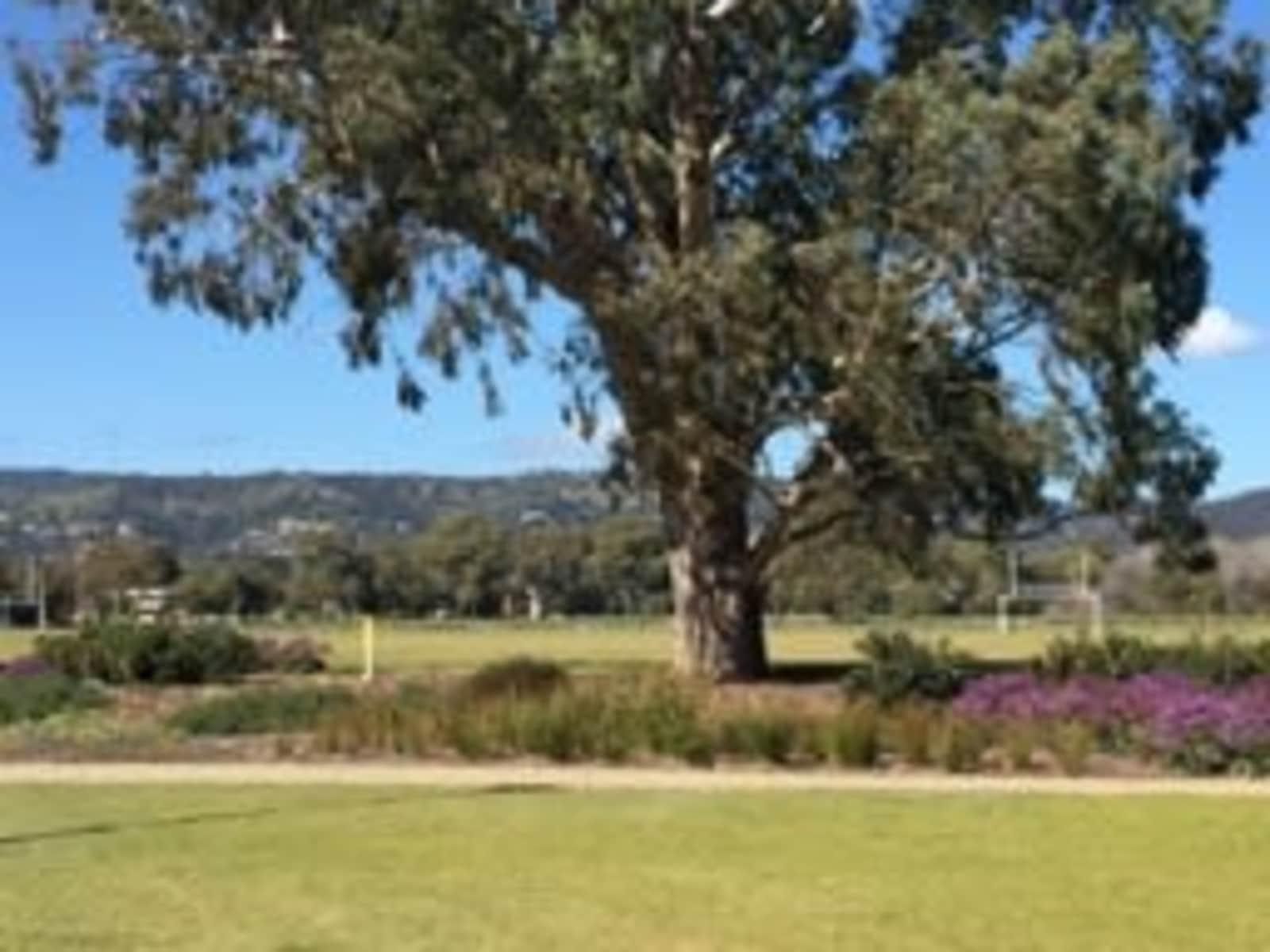 Housesitting assignment in Rose Park, South Australia, Australia