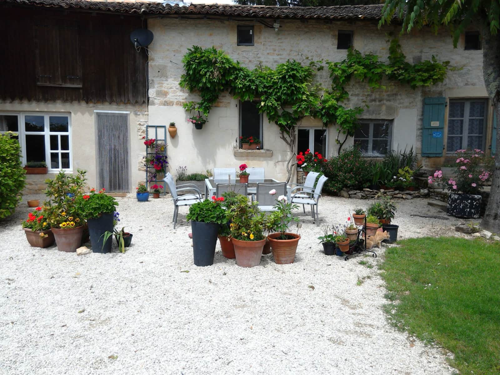 Housesitting assignment in Ruffec, France