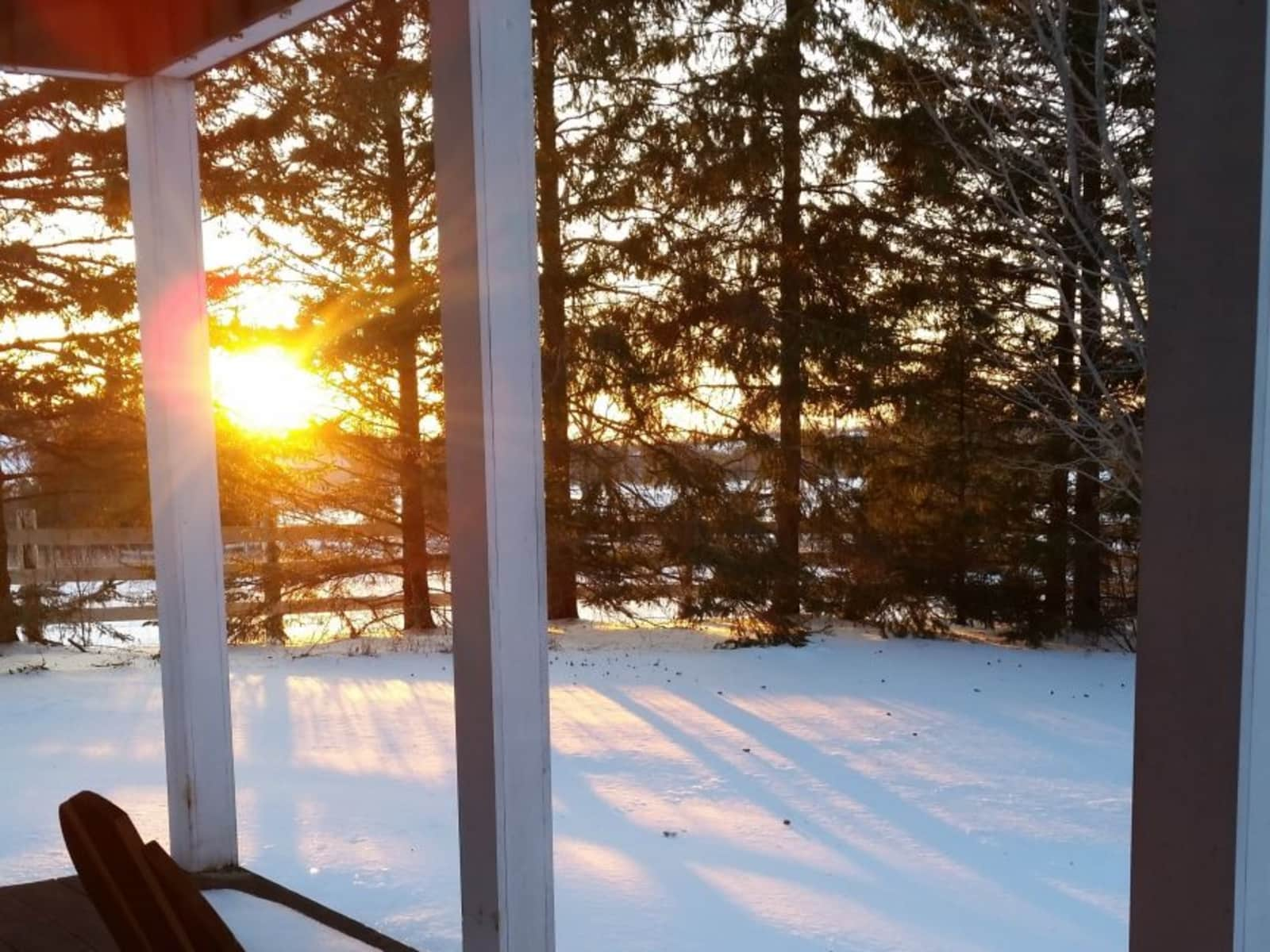 Housesitting assignment in Chesley, Ontario, Canada