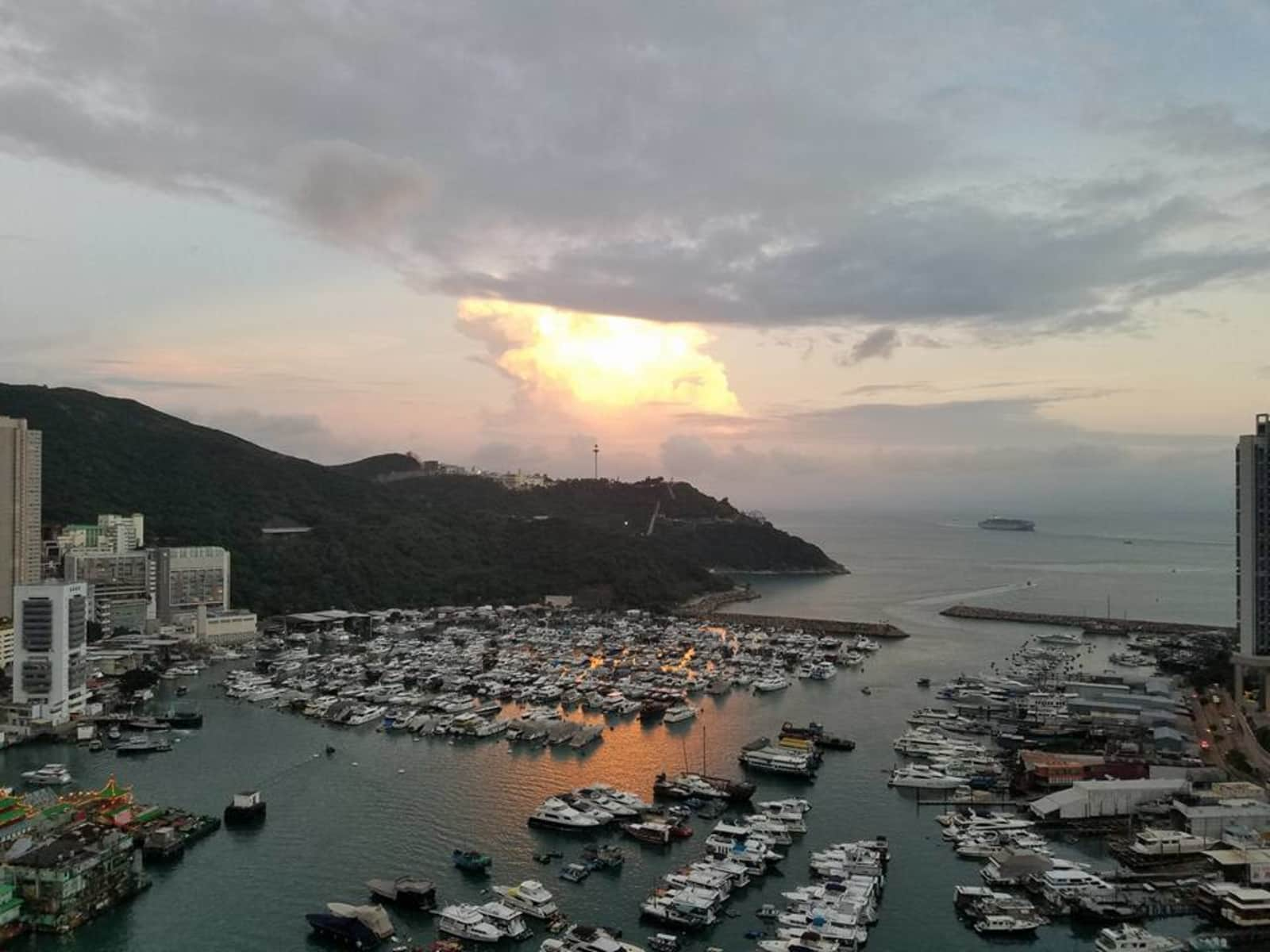 Housesitting assignment in Hong Kong, Hong Kong