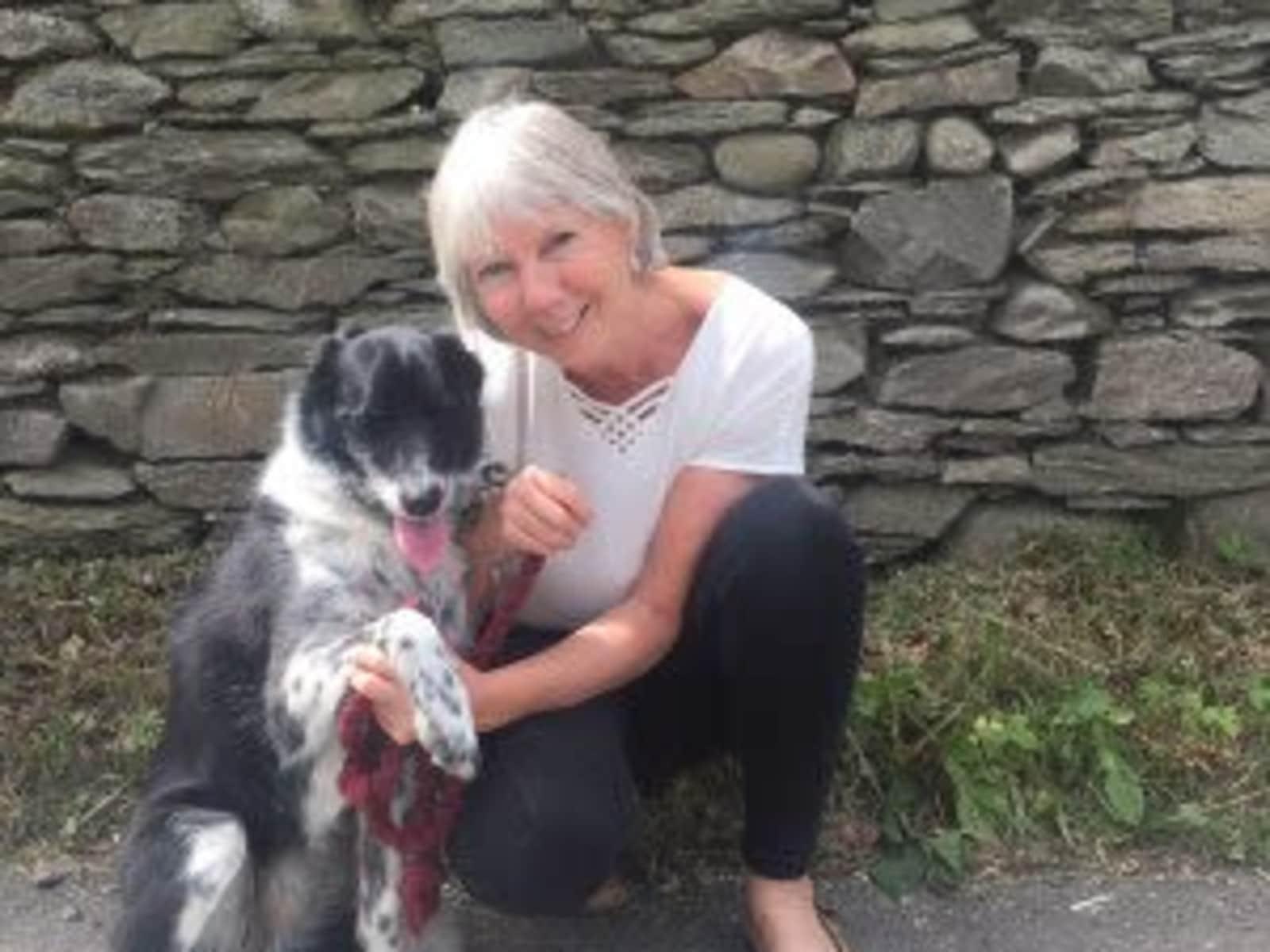 Brenda from Kendal, United Kingdom